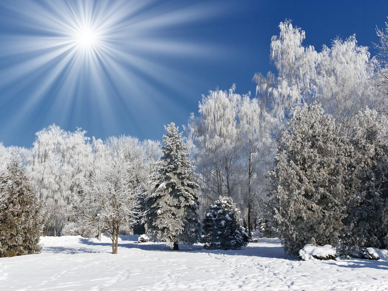 Картинки для рабочего стола зимней природы