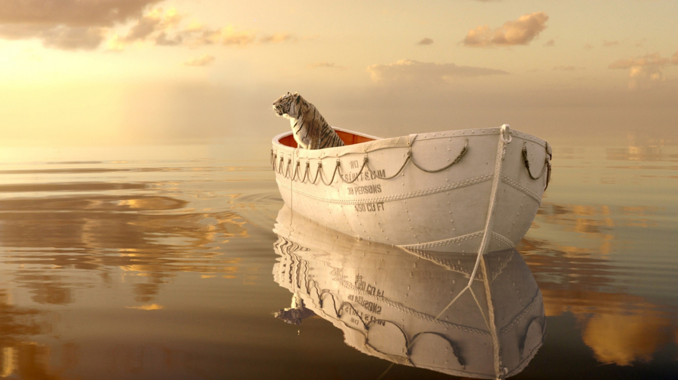 "life of pi reflection assignment Life of pi, assignment help martel draws attention to the word ""bamboozle"" in the preface to life of pi: which of the following is a reflection of the."