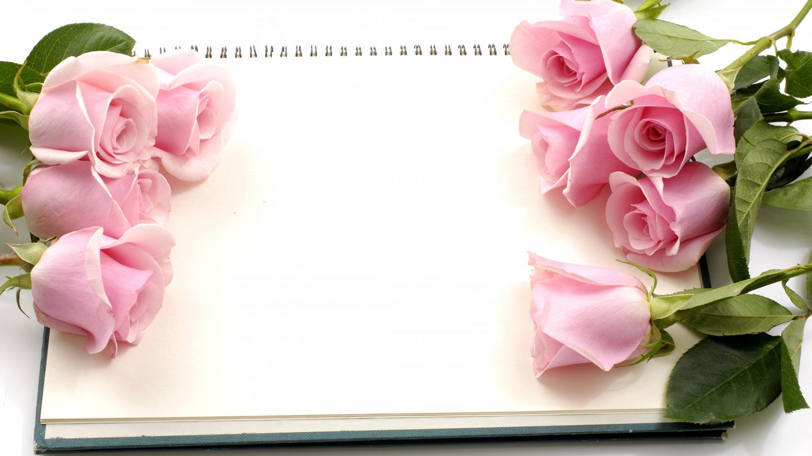 Красивые поздравительные открытки с днем рождения 23