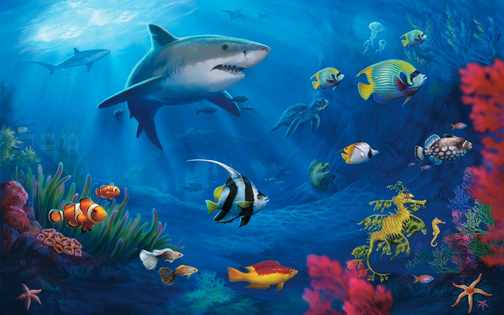 также картинки с рыбами в хорошем качестве этом нет