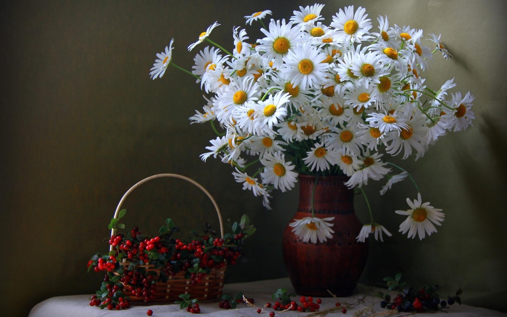 Открытки красивые ромашки, количество цветов открытках