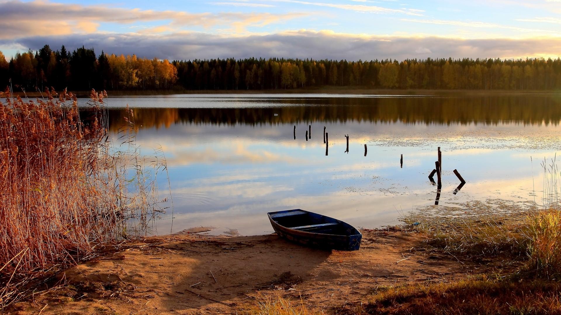 Лодка на берегу зеленого озера  № 2493009 загрузить