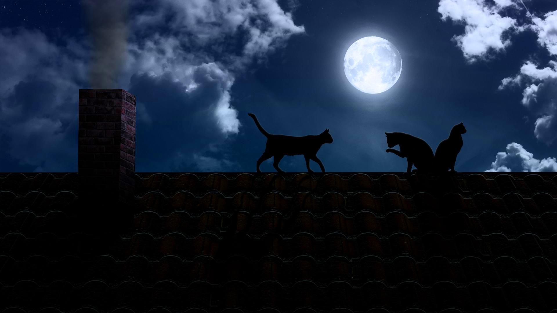 картинки ночь крыша луна новому дню