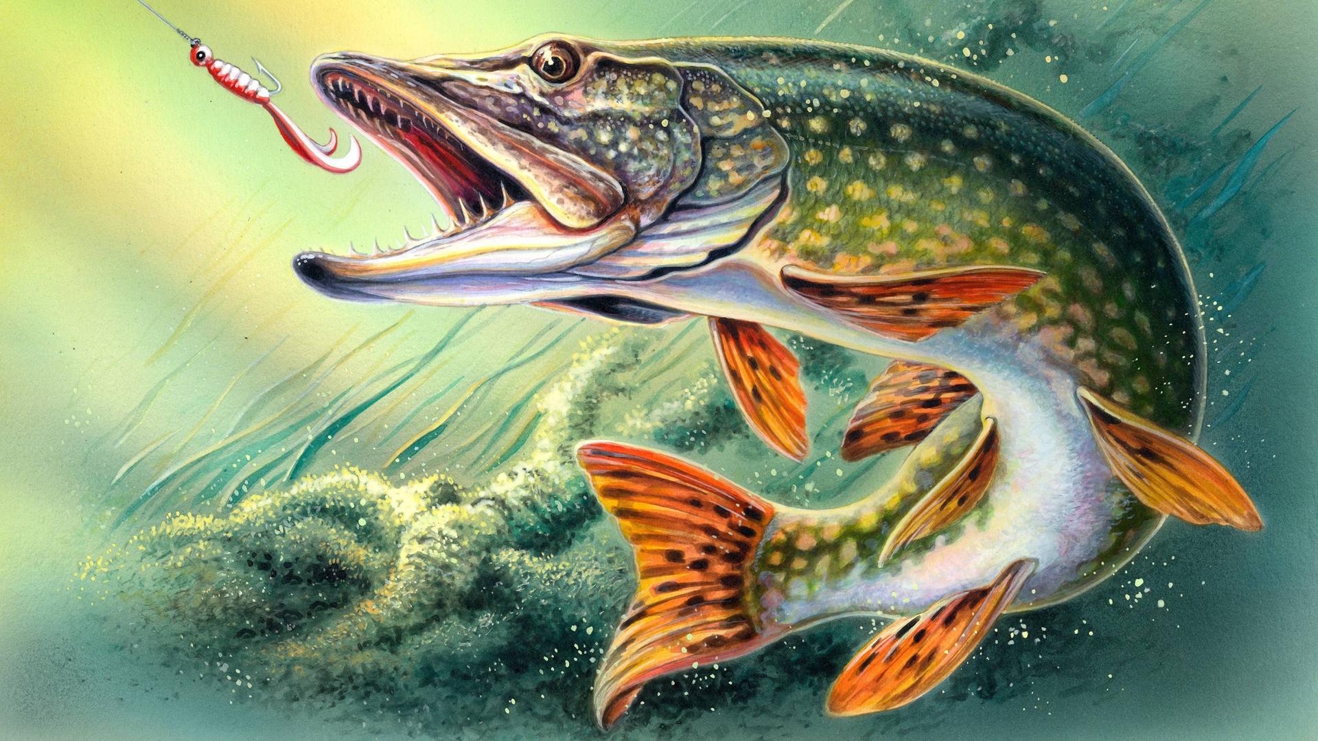 Как рисовать рыболова