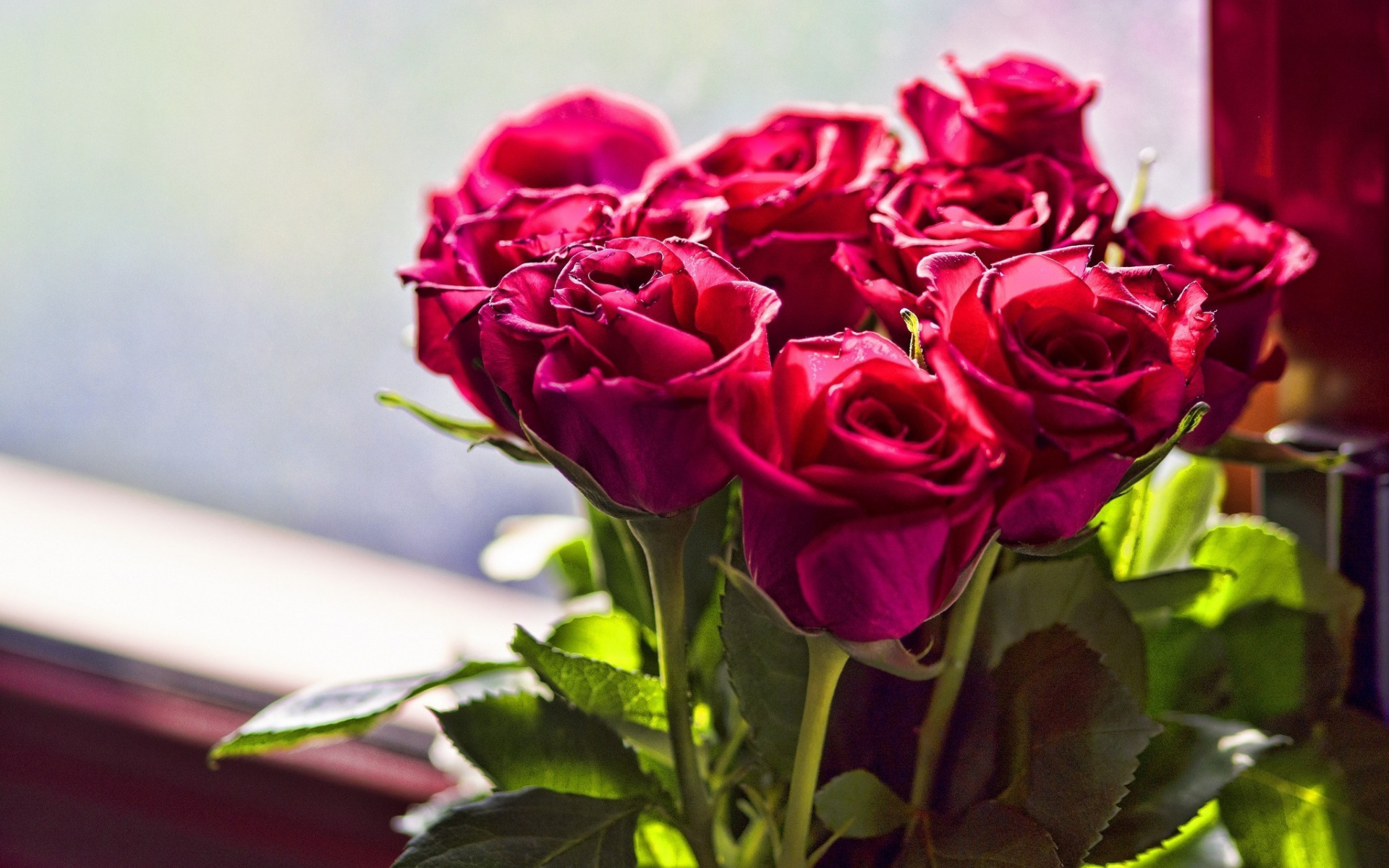Букет алых роз красивый