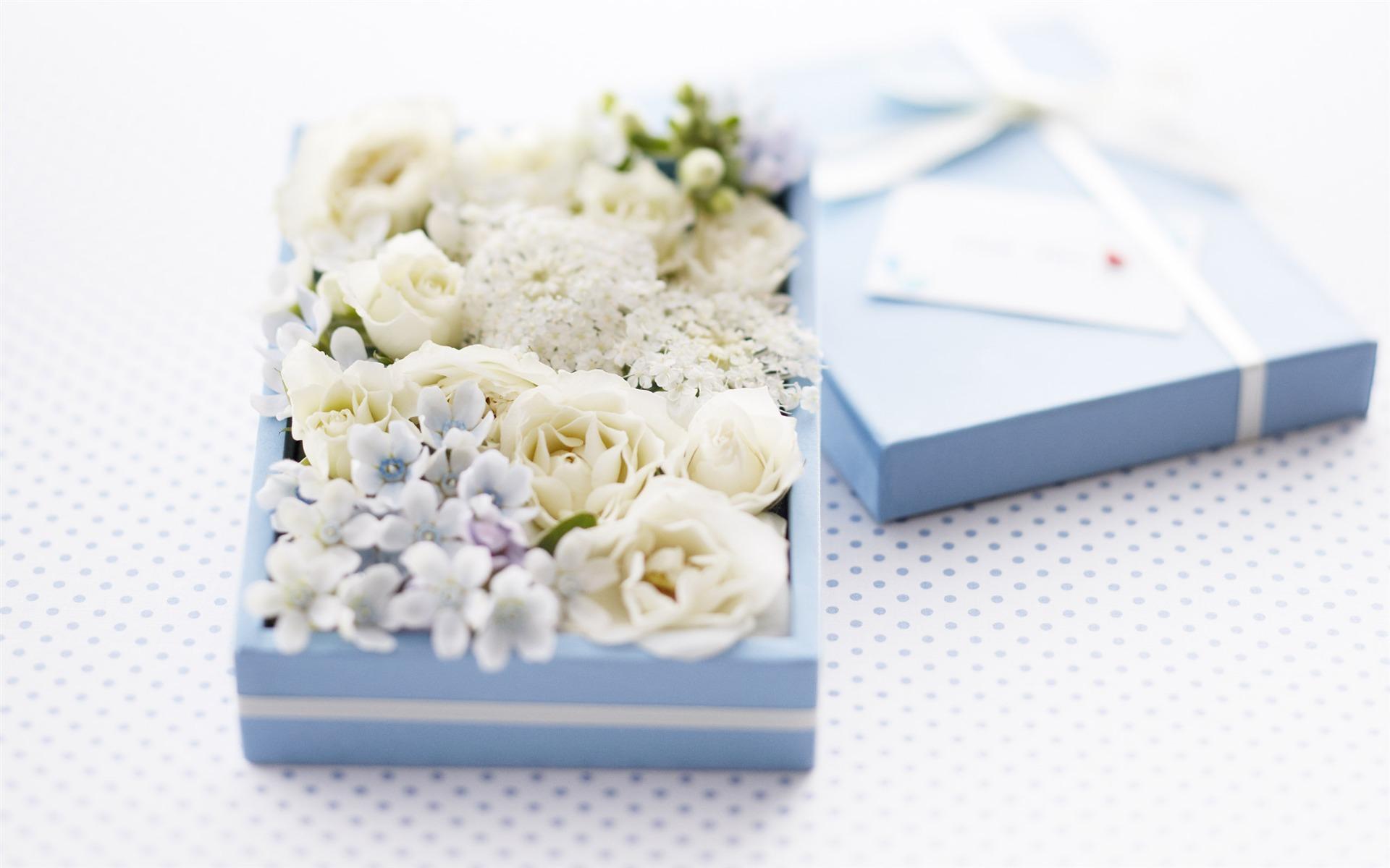 можете картинки на рабочий стол цветы в коробке оси симметрии