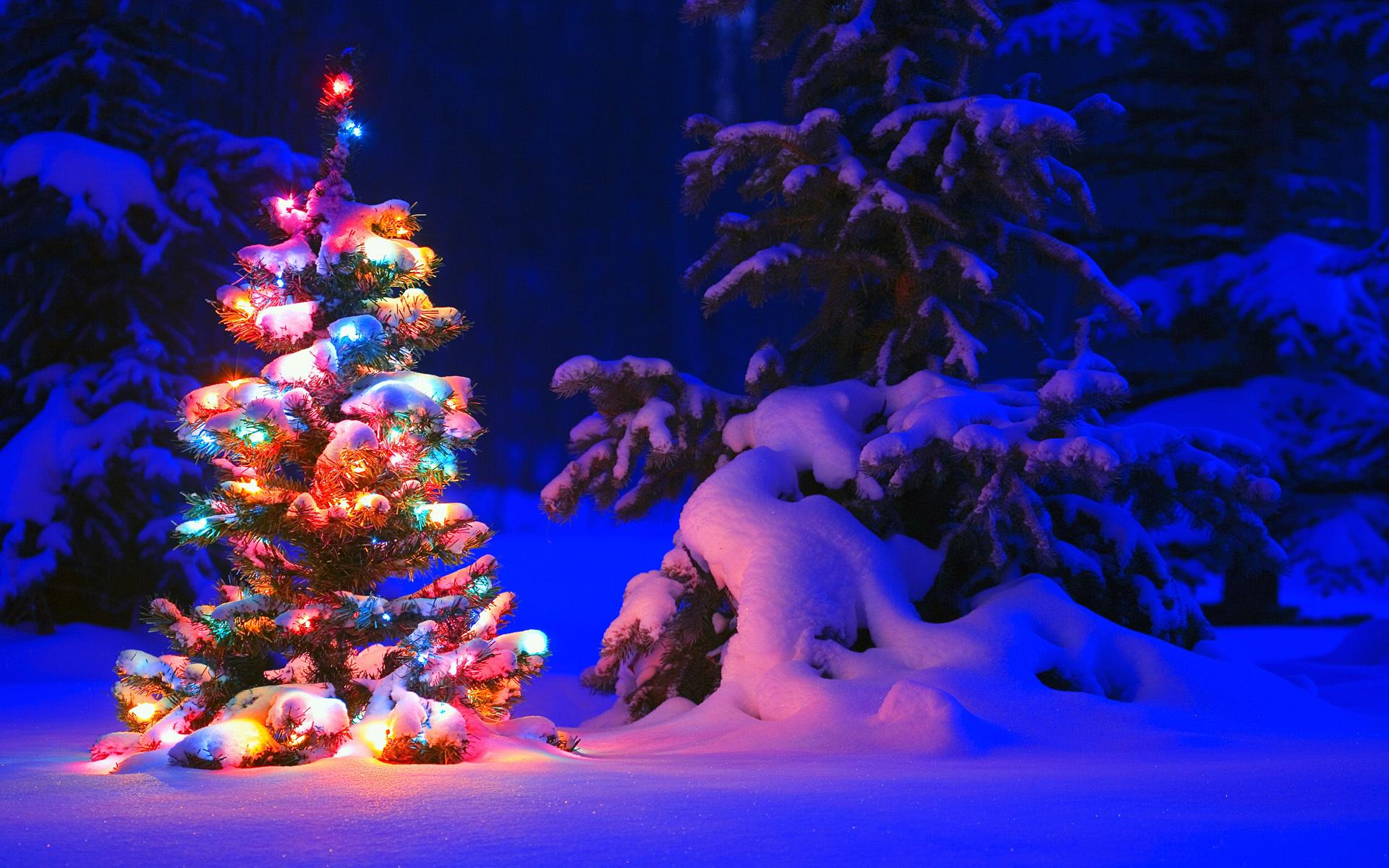 продукции новогодние обои на рабочий стол елка в огнях широкоформатные покрышек стали отдельным