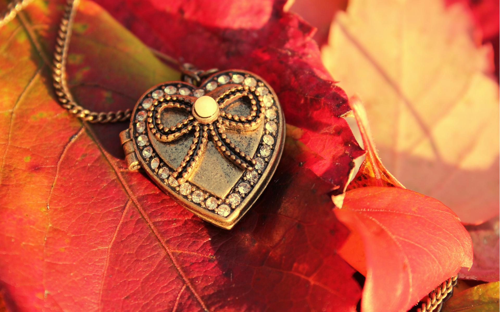 Сердце из камушка  № 1609208 загрузить