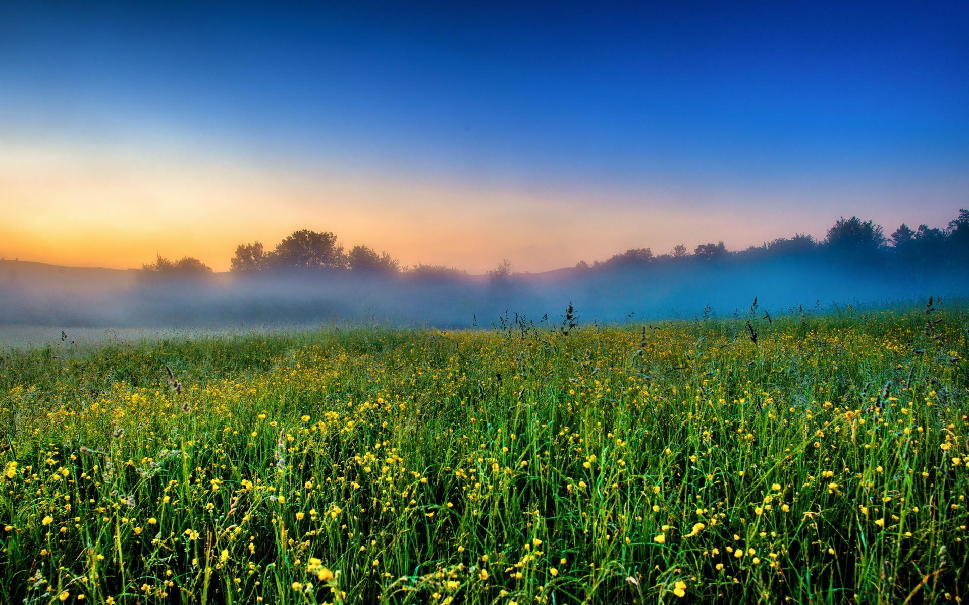 самуэльсон популярный фотографии утреннего поля африканские маски, как