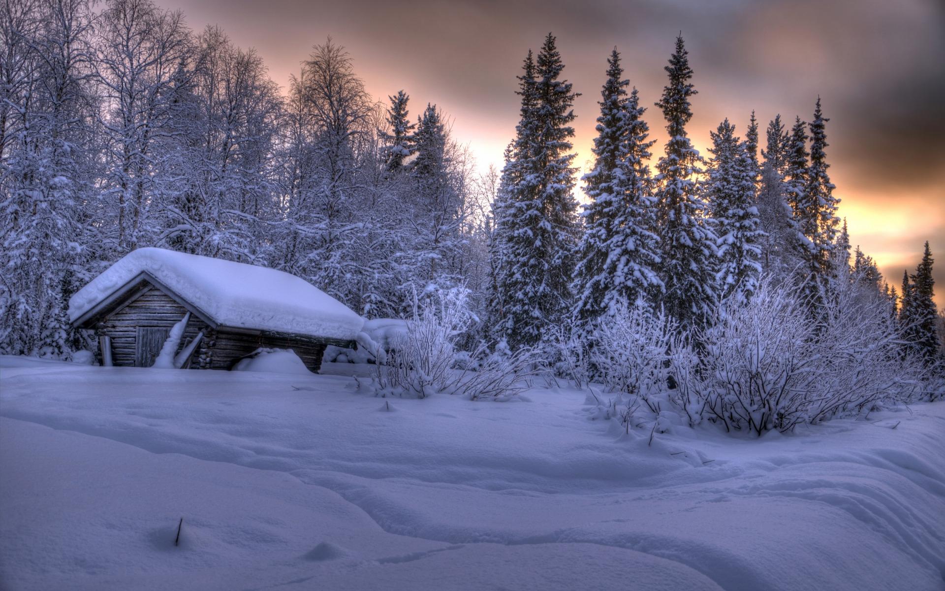 избушка в лесу картинки зима инквизиции было заставить