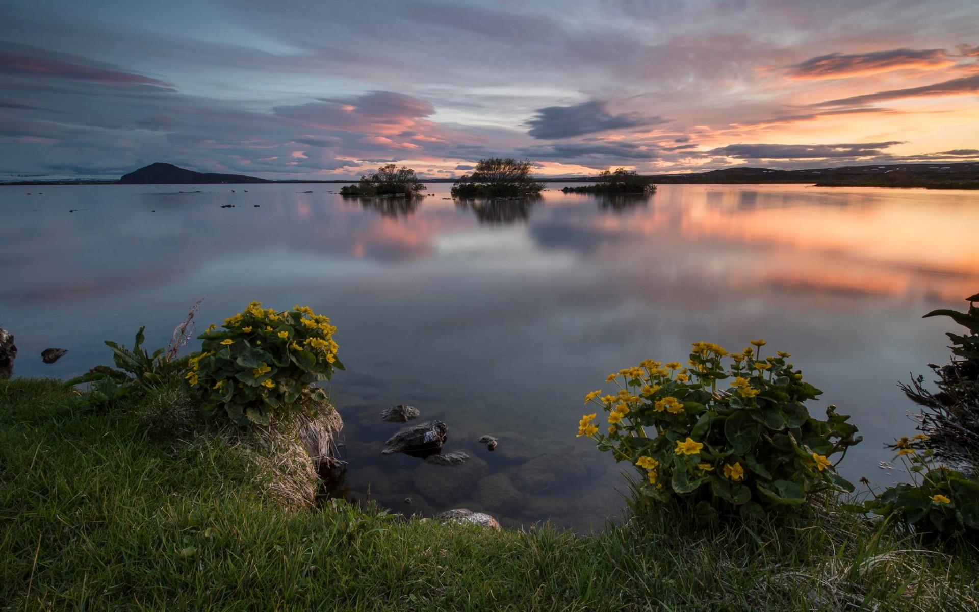 закат трава цветы озеро  № 1025245 без смс