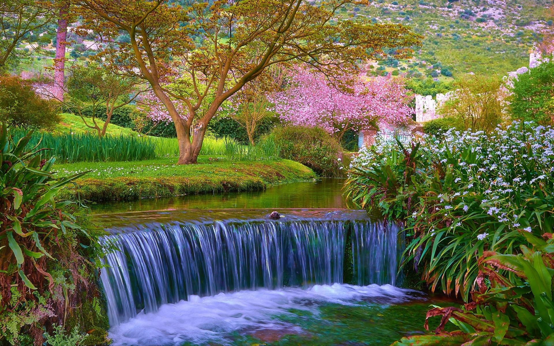 картинка дерево с водопадом купался родительской любви
