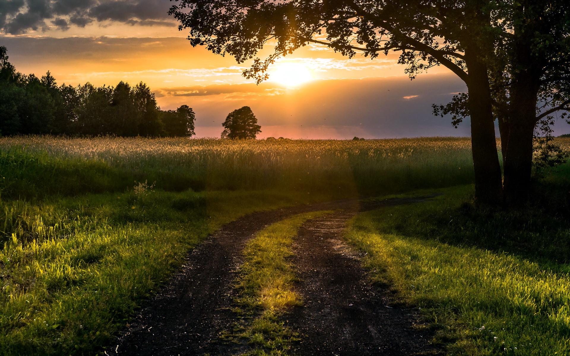 Картинки летний пейзаж заход солнца
