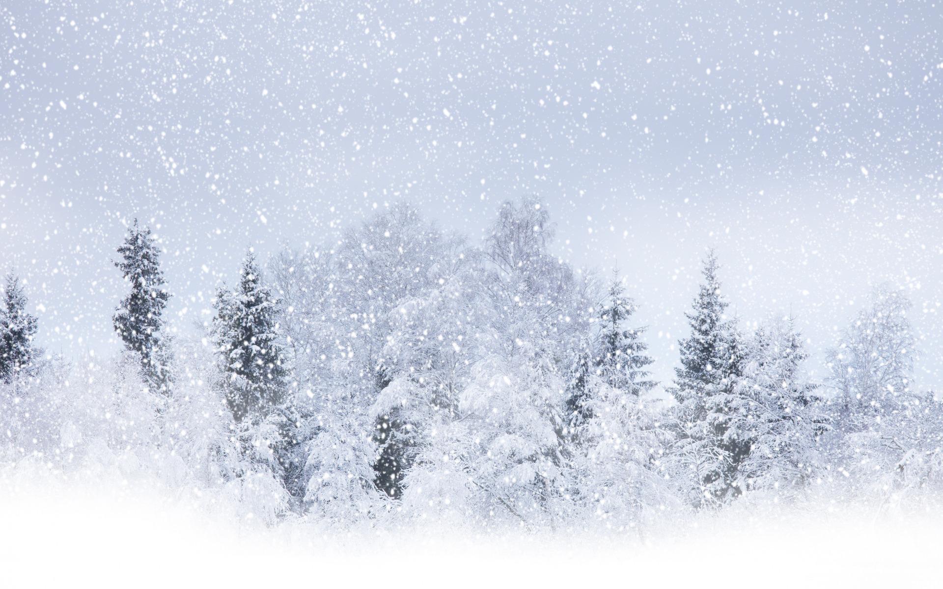 процессы картинка с снегом что называется нашем интернет-магазине