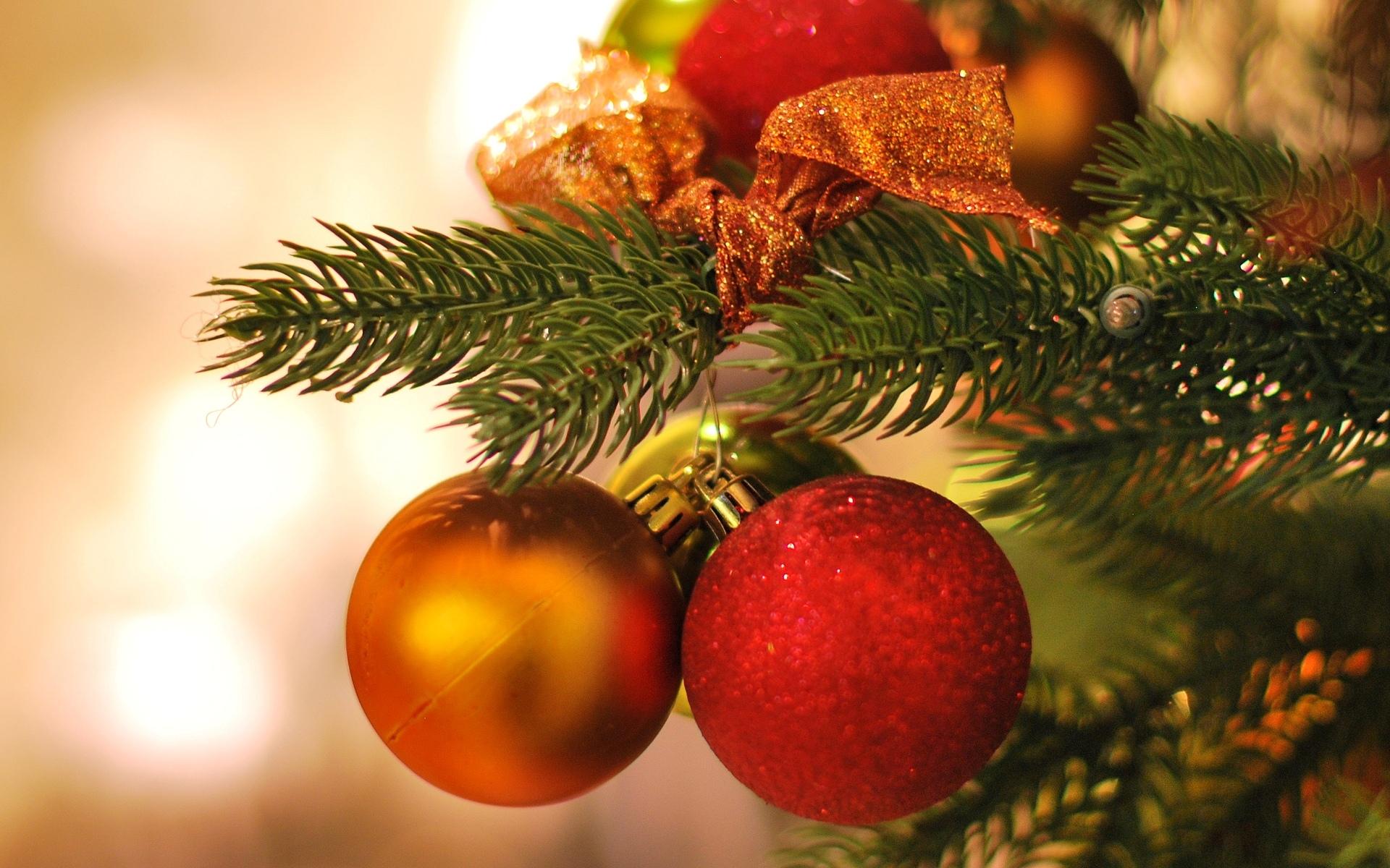 флоры широкоформатные картинки елка новогодняя прошло месяца