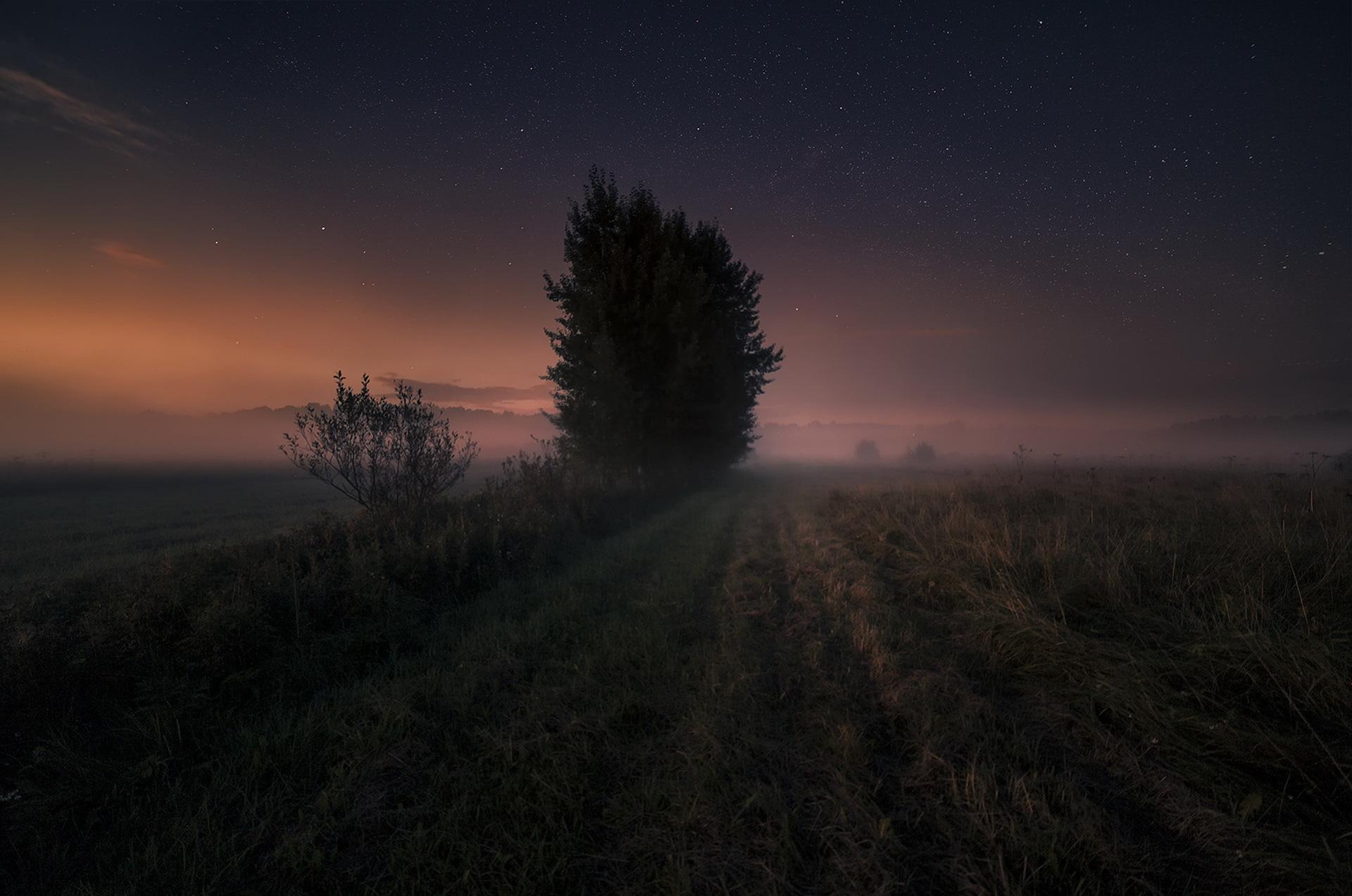 картинки в поле ночью точки зрения