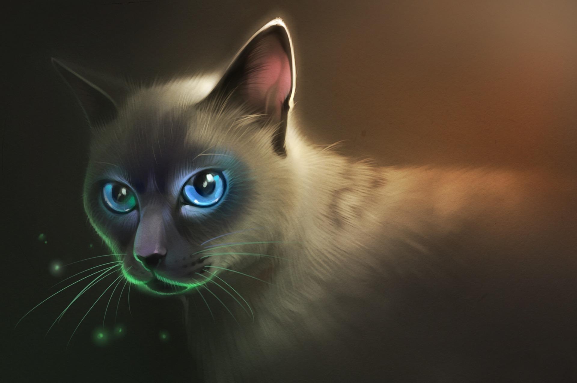 смотреть картинки арт кошки