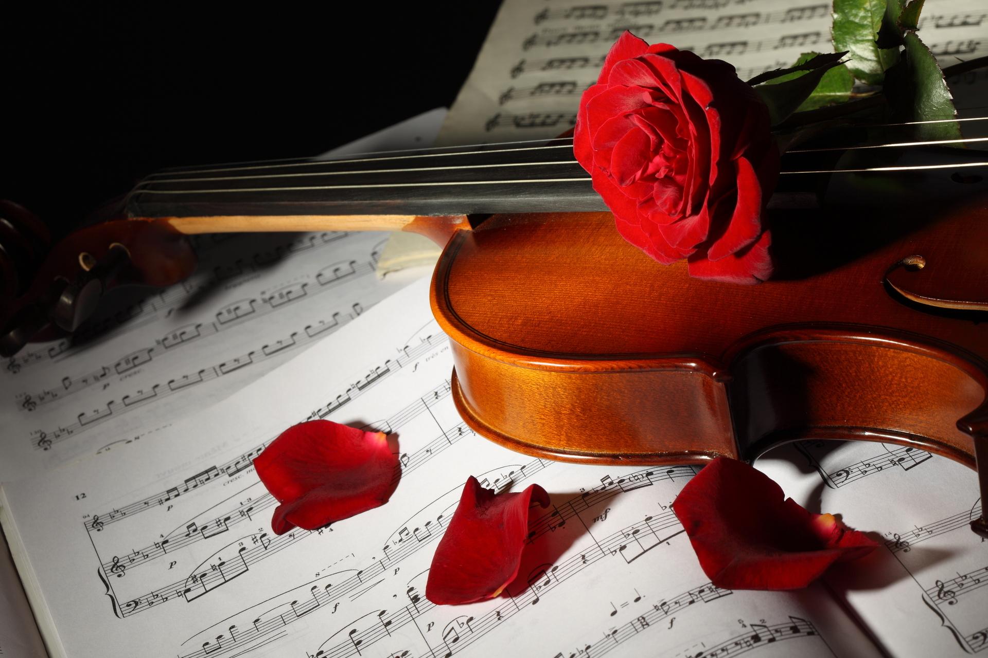 много фотографии картинки на тему мелодии любви своеобразным является