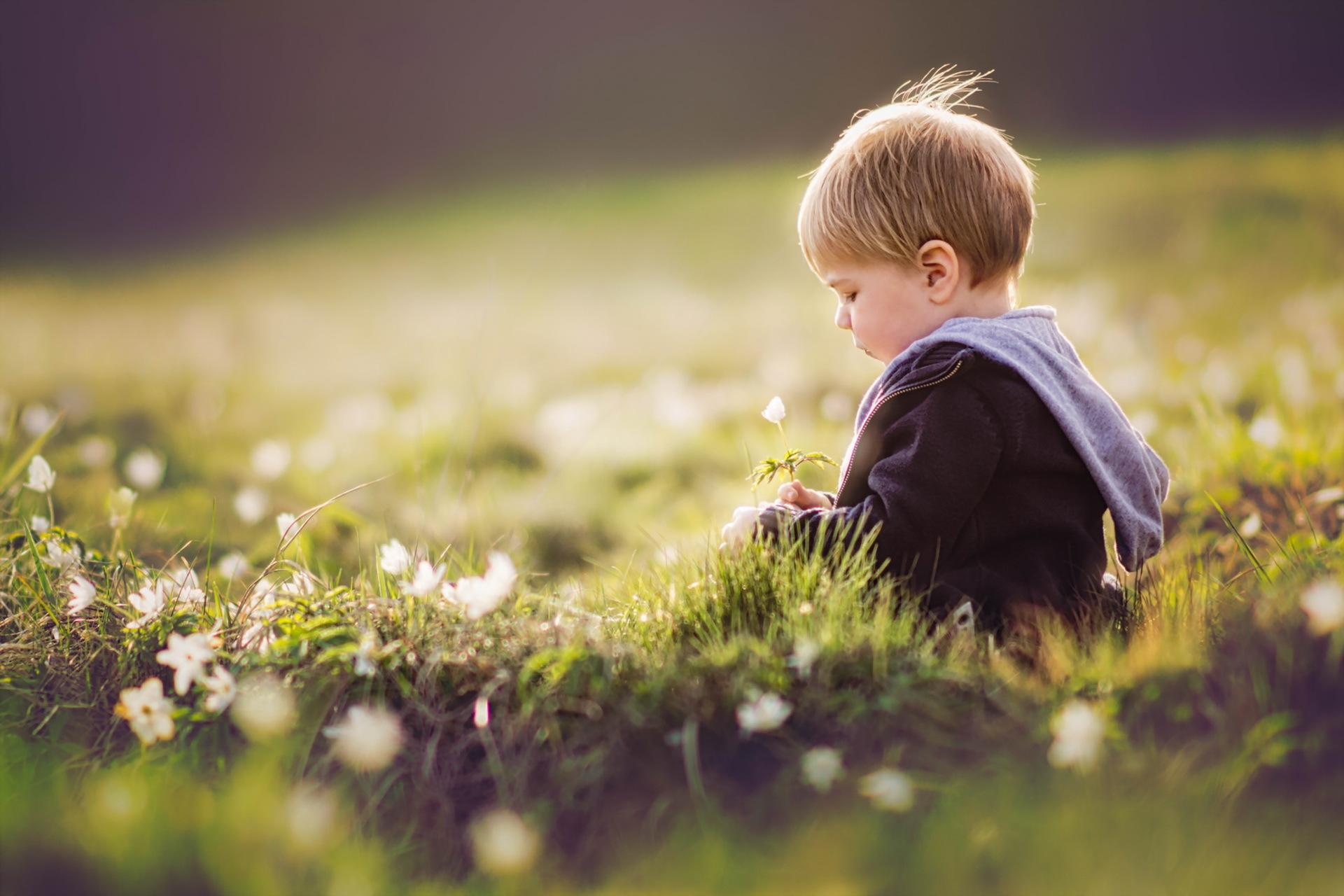 Картинки где мальчик с цветами
