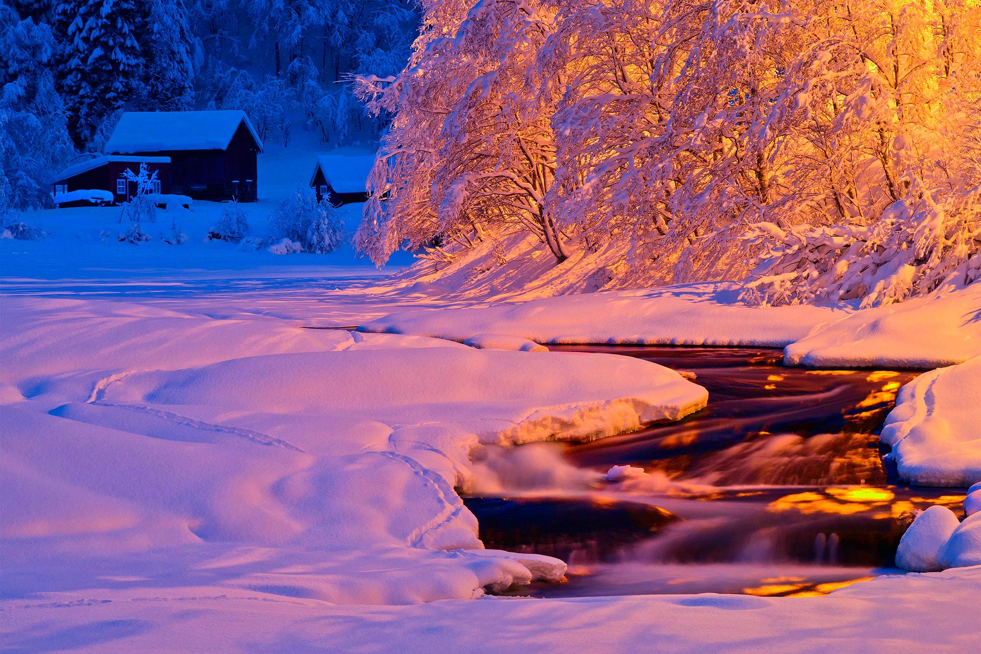 Живые Обои Зима Бесплатно