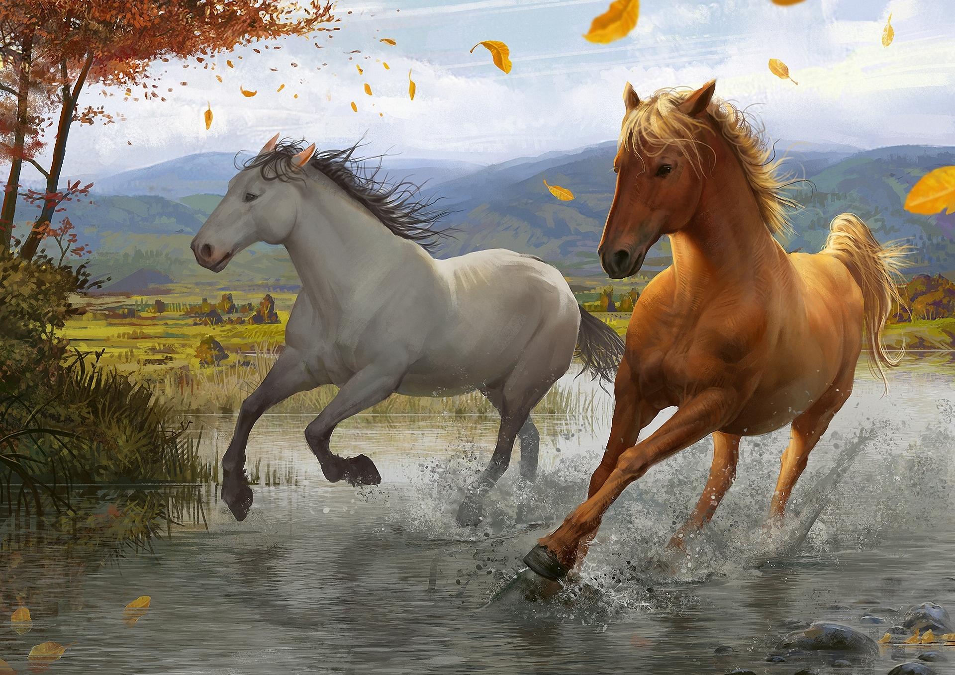 рисунок графика лошадь природа животные figure graphics horse nature animals  № 3925564 загрузить