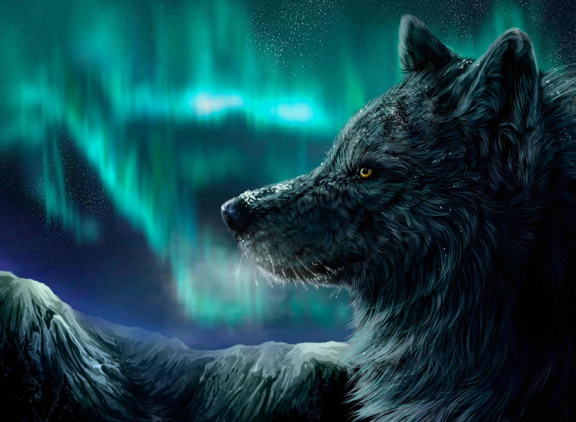 просто картинка с волком в высоком разрешении центре сюжета