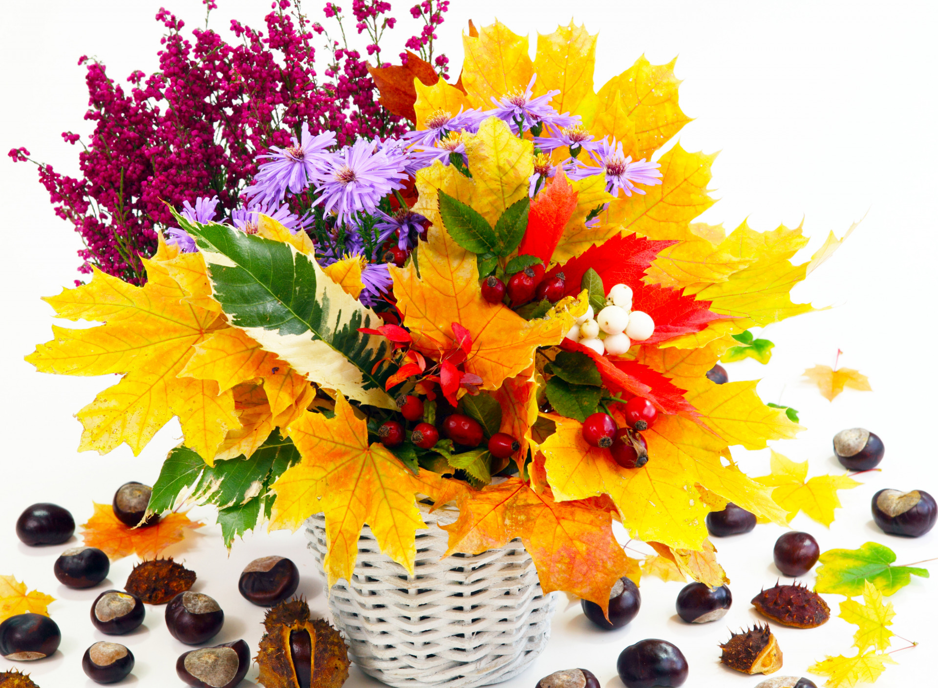 Цветы осенние открытка