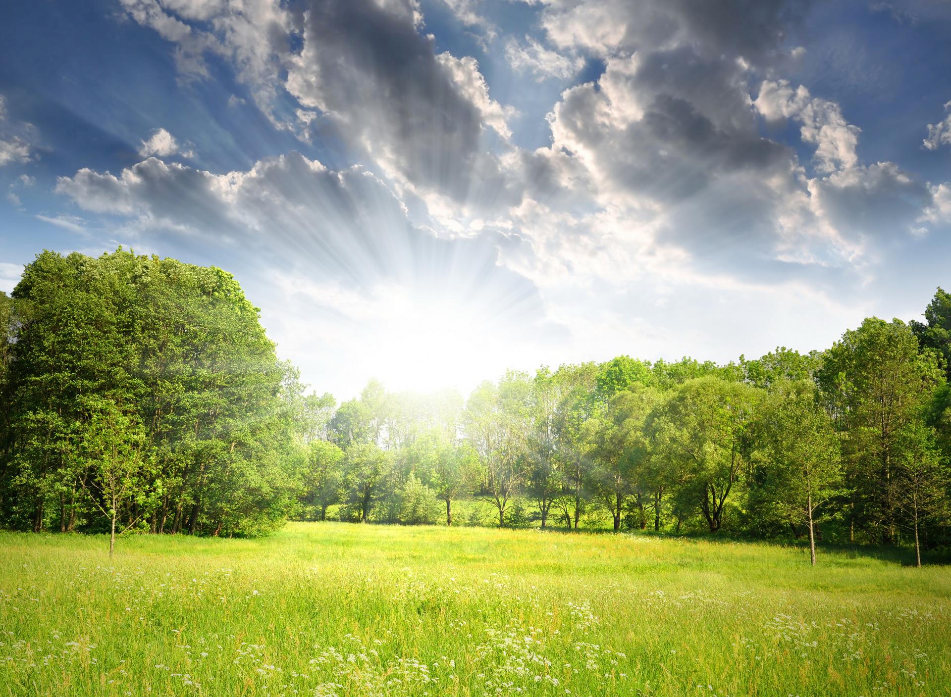 толк солнечный день фото картинки картинка