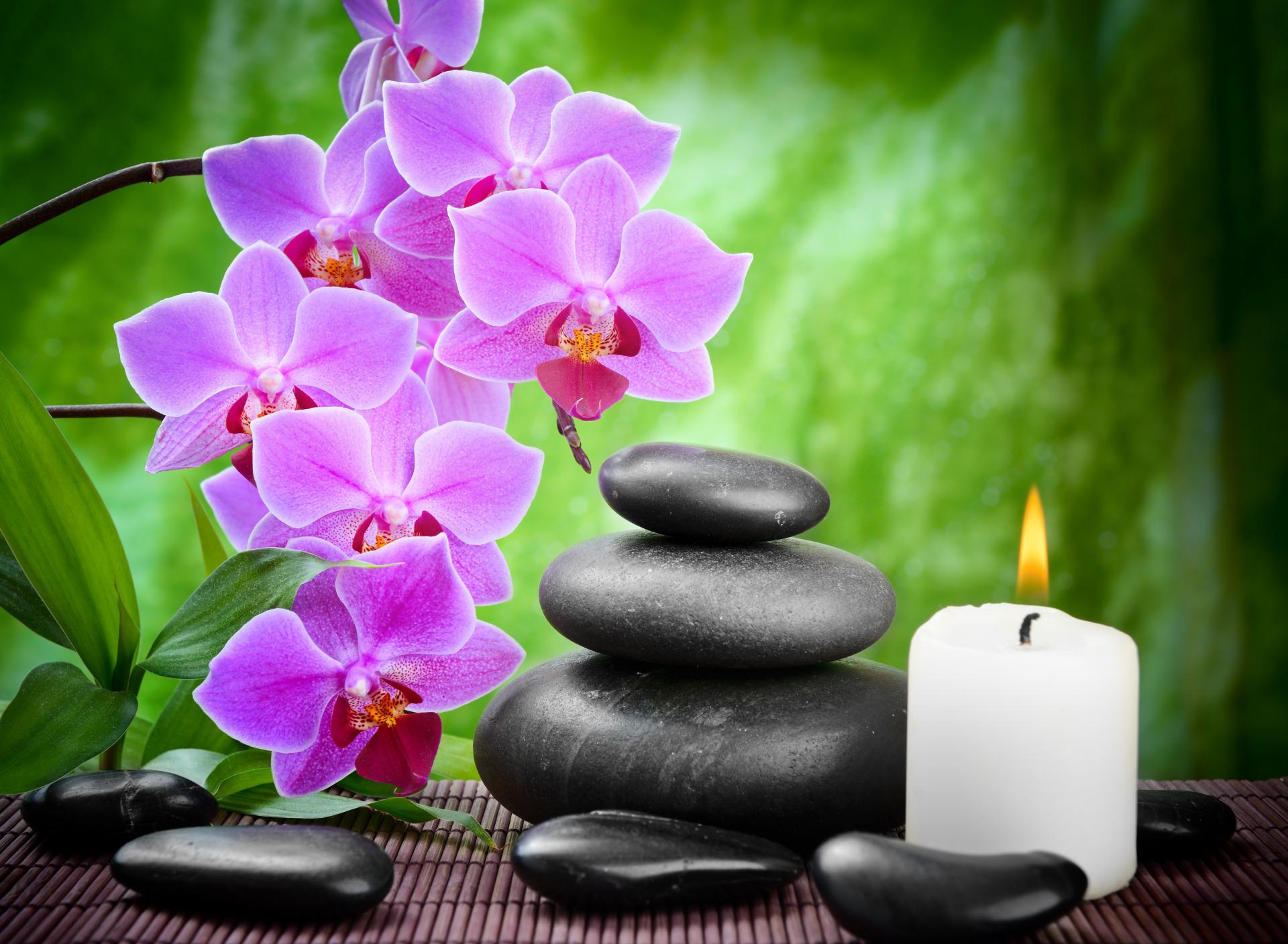 Картинки бамбук камни и орхидея