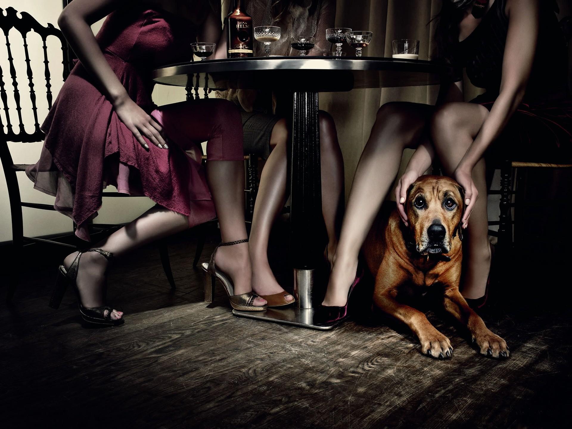 devki-porno-foto-devushki-pod-stolom