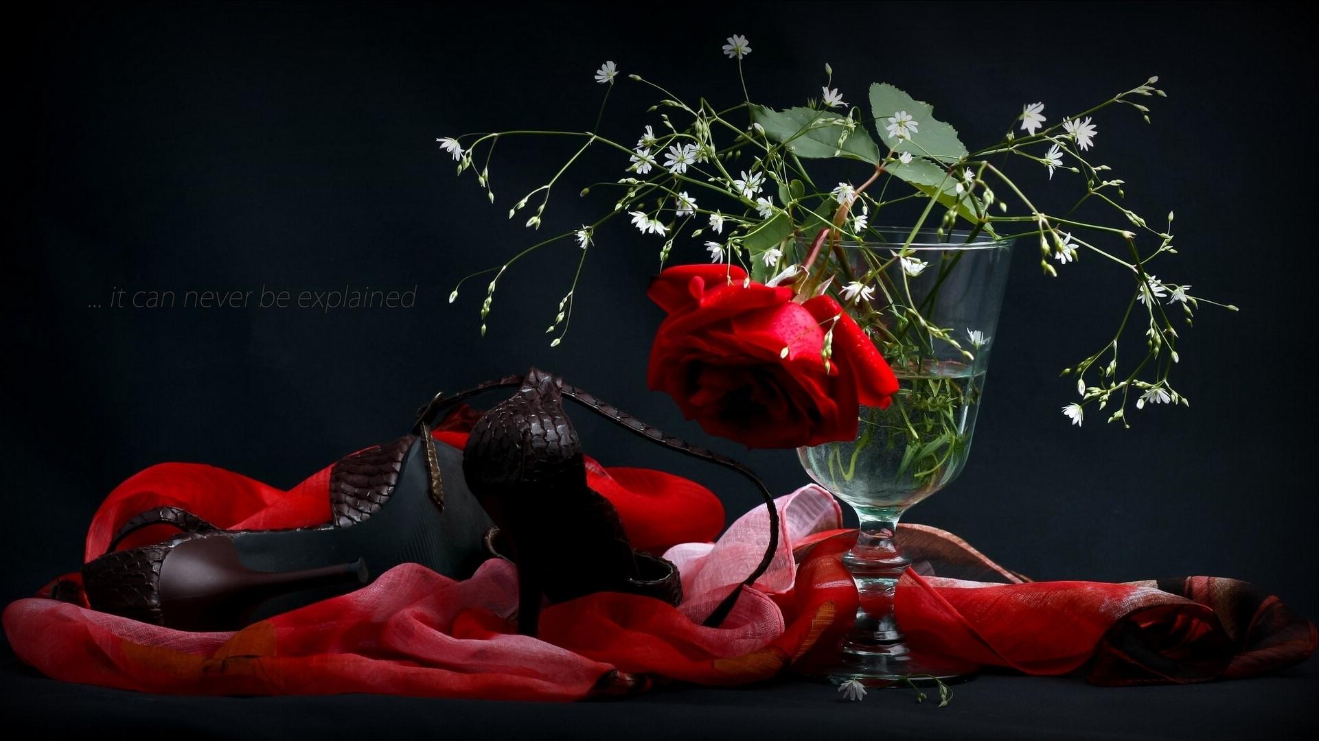 Туфли и розы  № 3398295 бесплатно