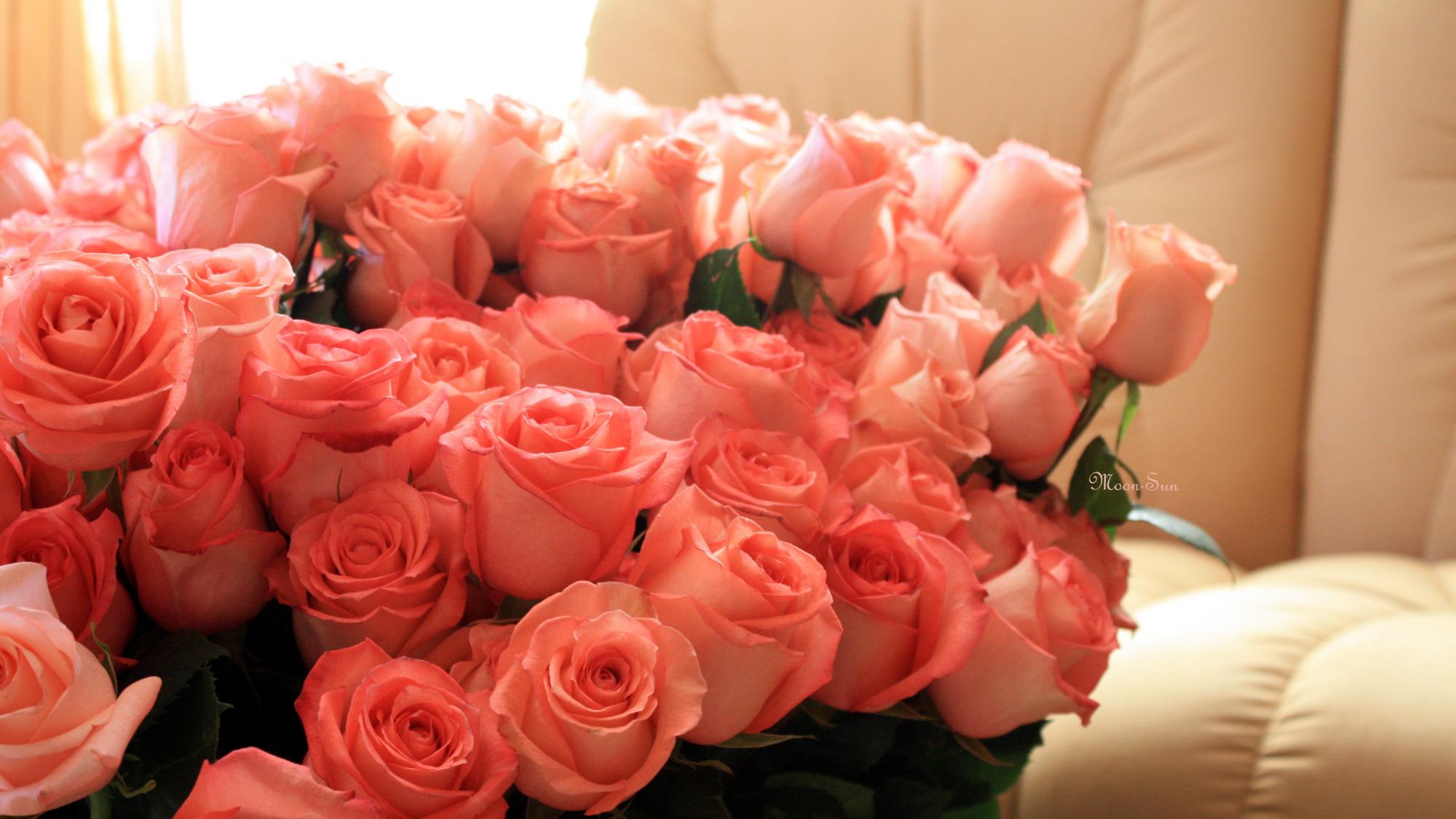 Розы букет  № 3015026 загрузить