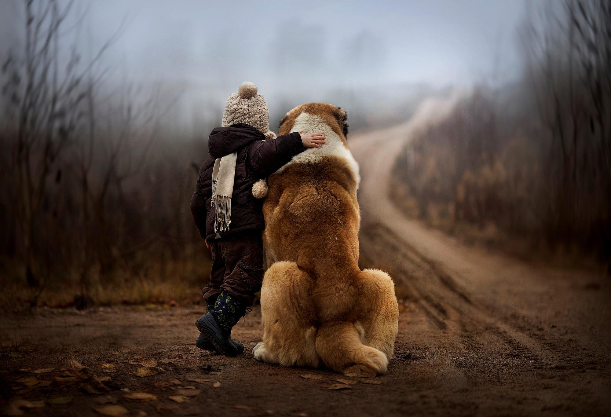 Картинки на аву для парней с собаками