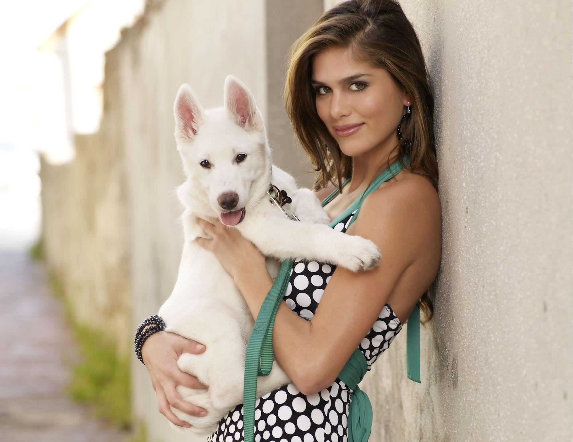 Девушка и белый пес картинка