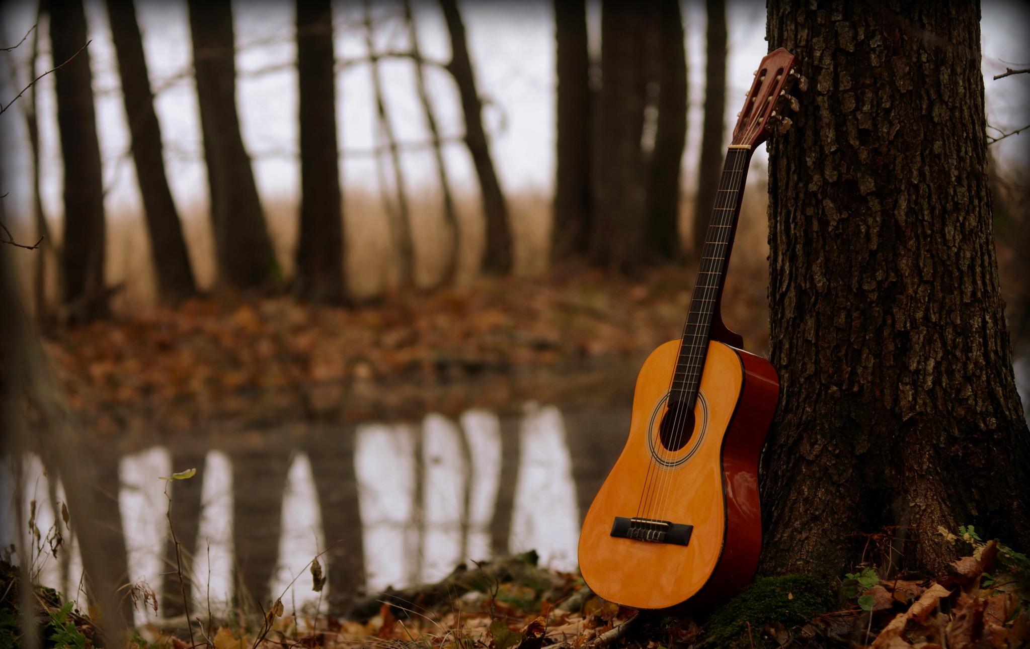 парень гитара мужчина природа дерево  № 3470080 бесплатно