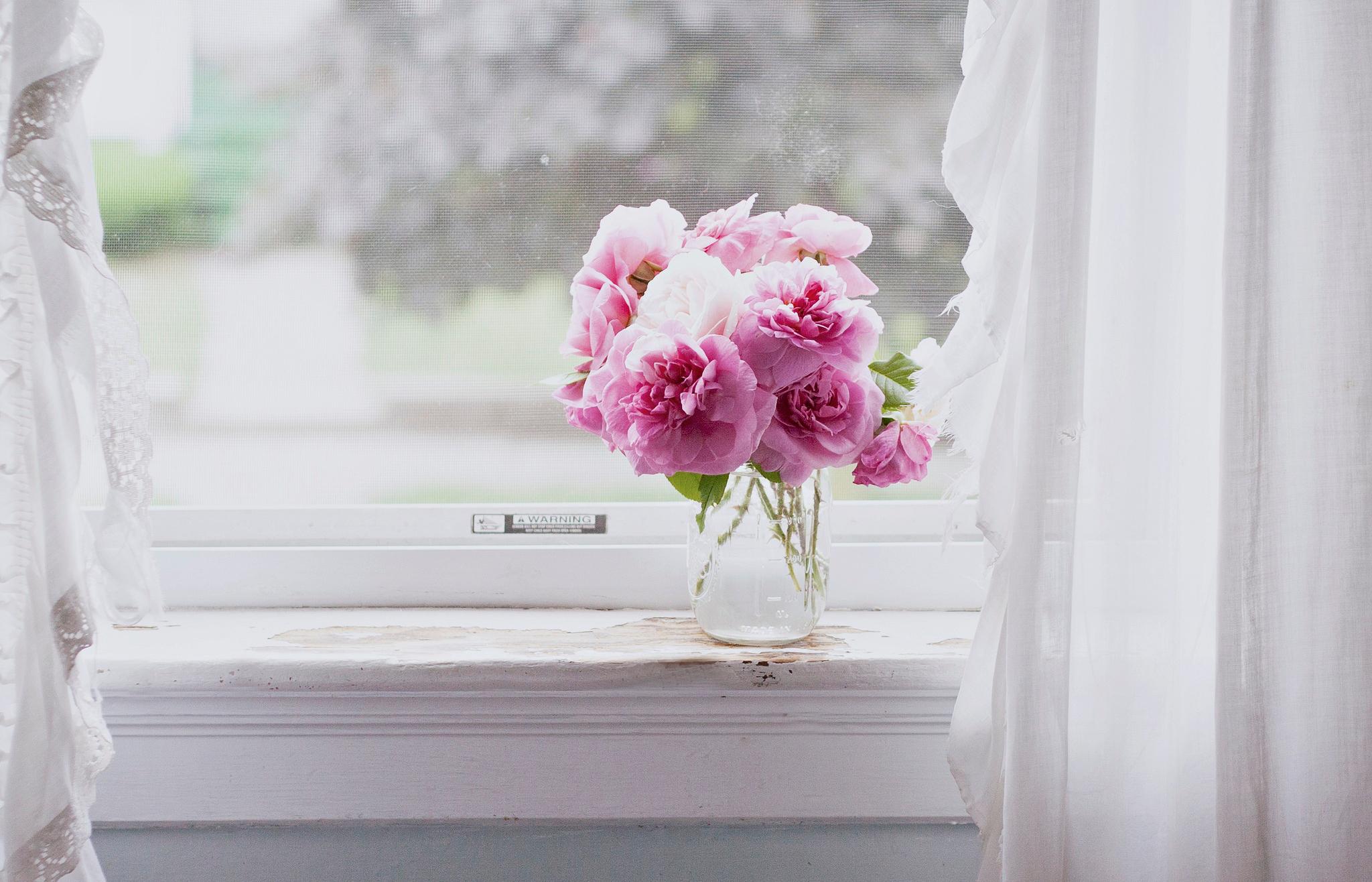 Обои для рабочего стола цветы на окне