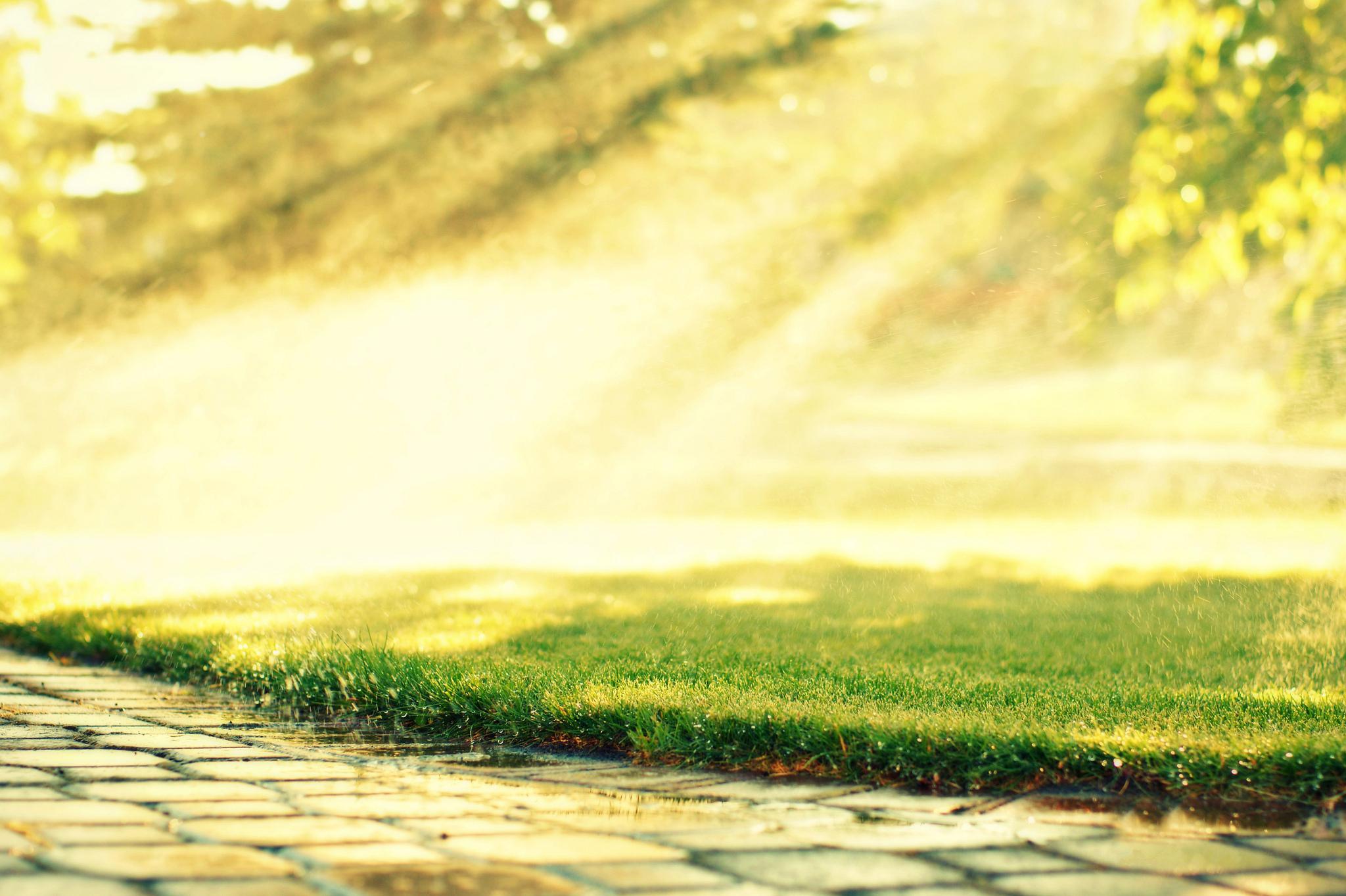 дорога, солнце, трава, деревья  № 3117721 бесплатно