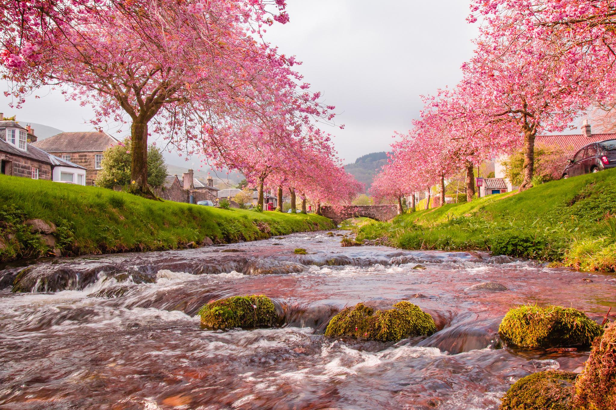Изображения весна в картинках