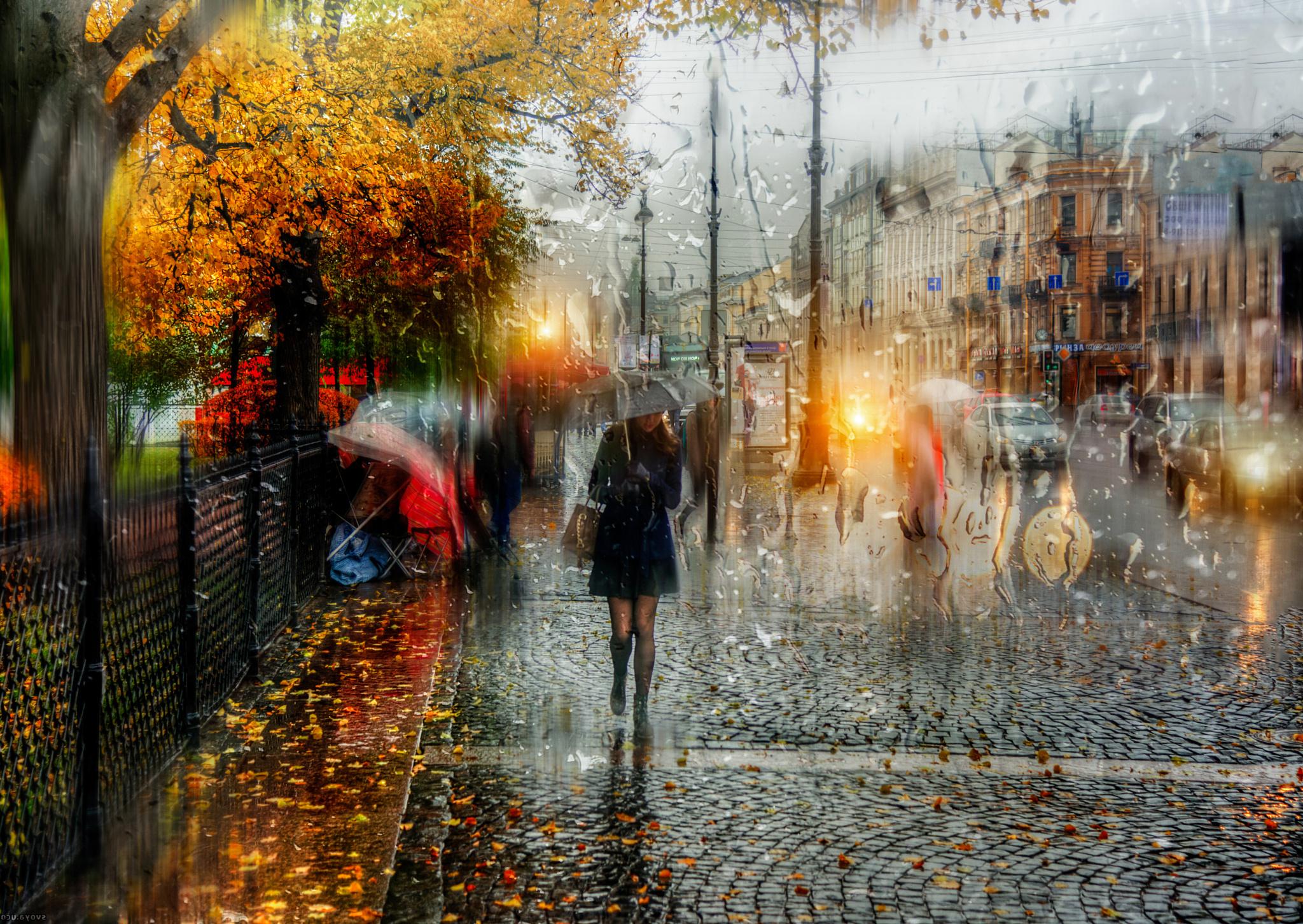 Обои для рабочего стола осень дождь город