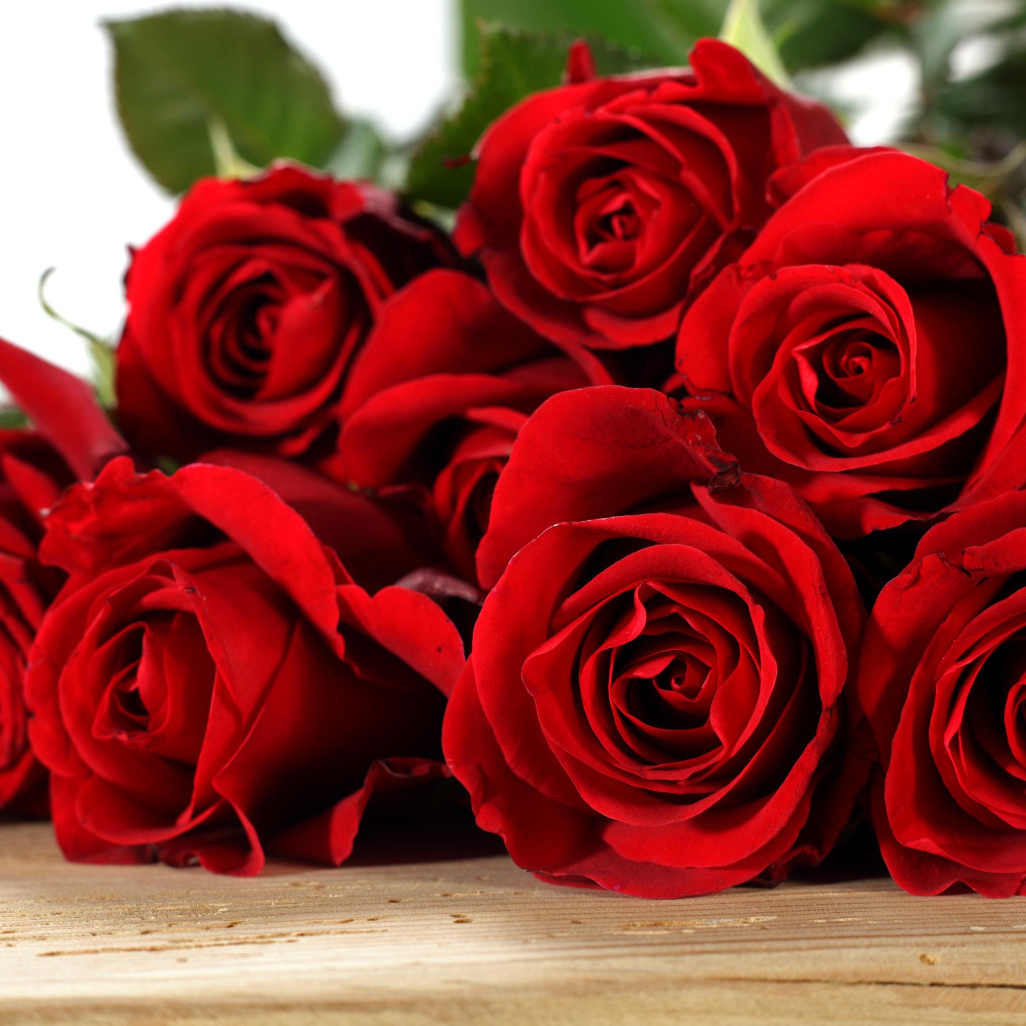 Открытки с днем рождения красные розы