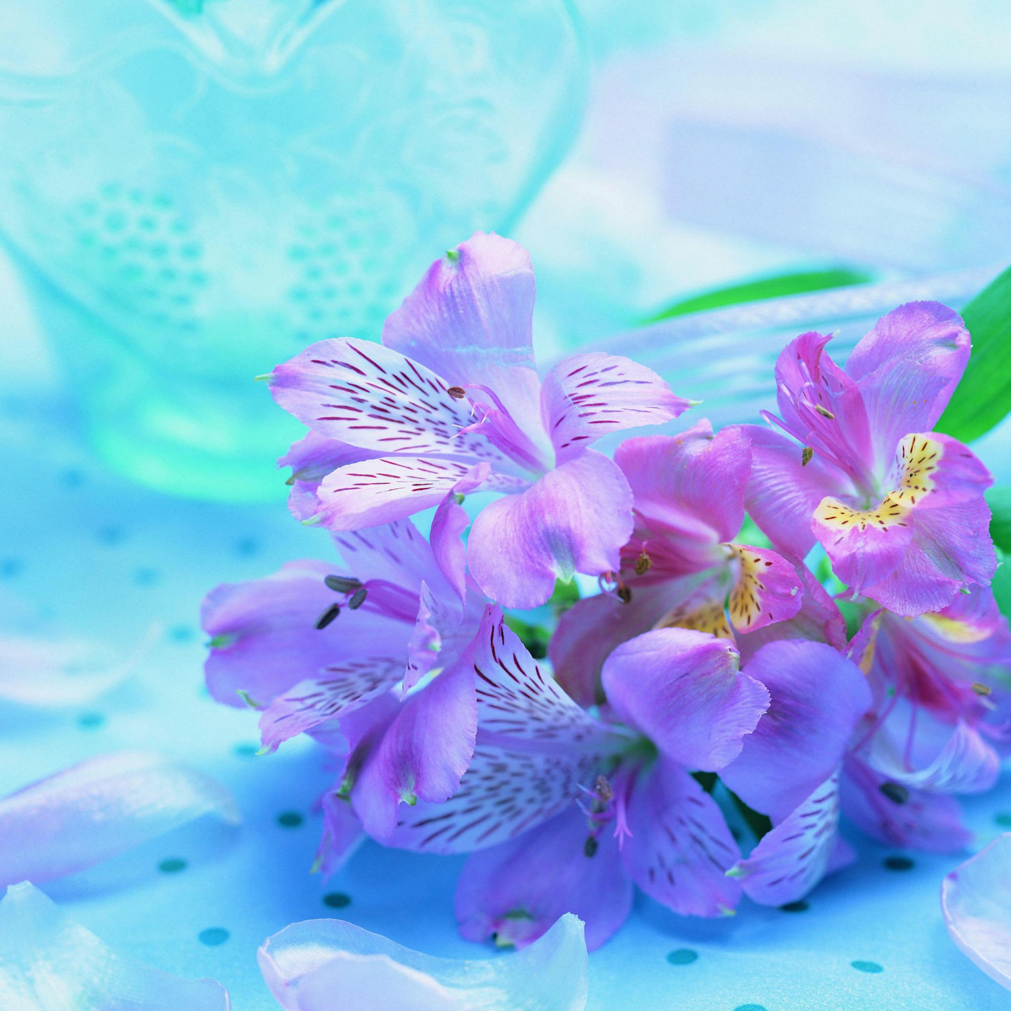 Днем рождения, картинка с днем рождения орхидеи