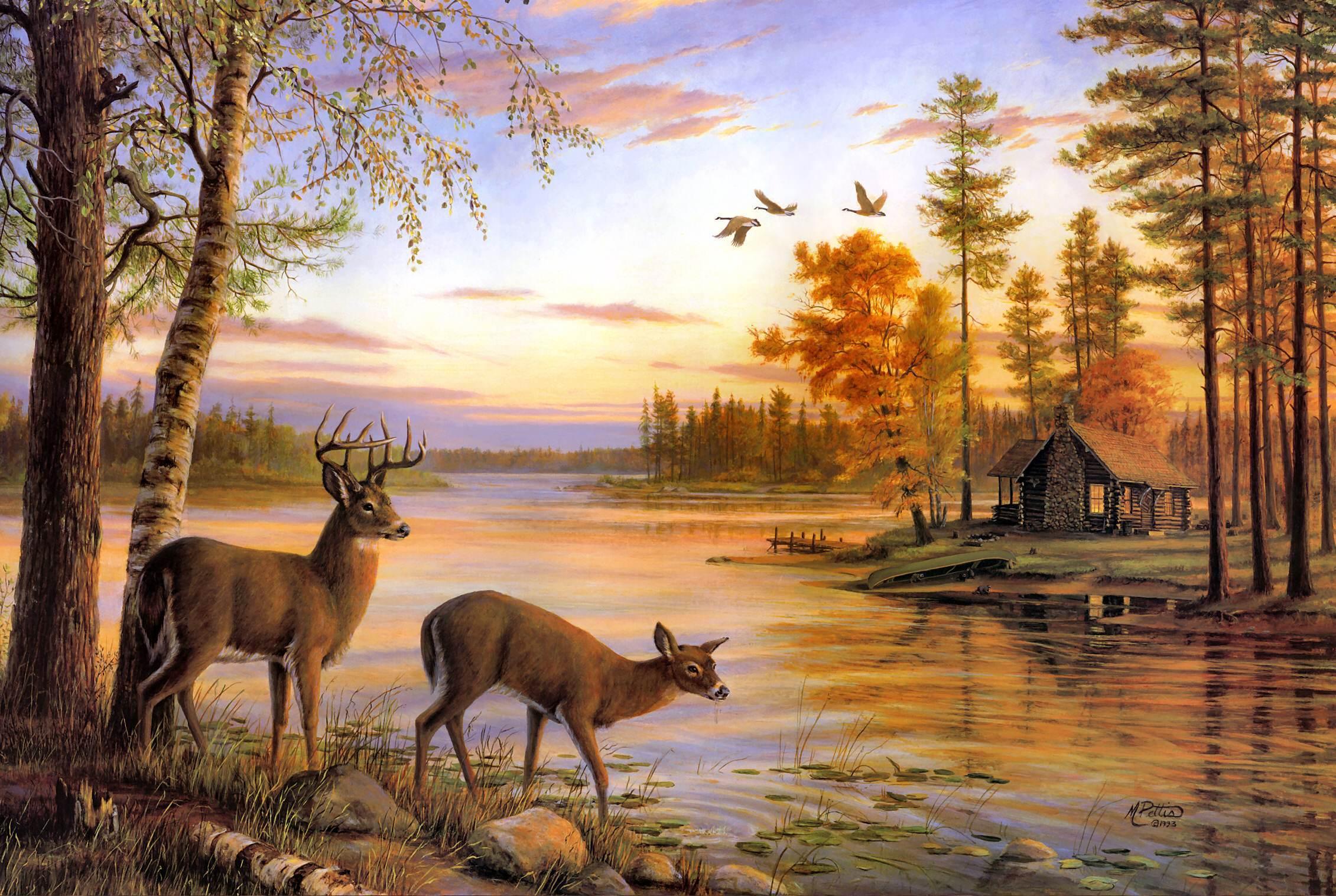 Картинка пейзаж природы с животным