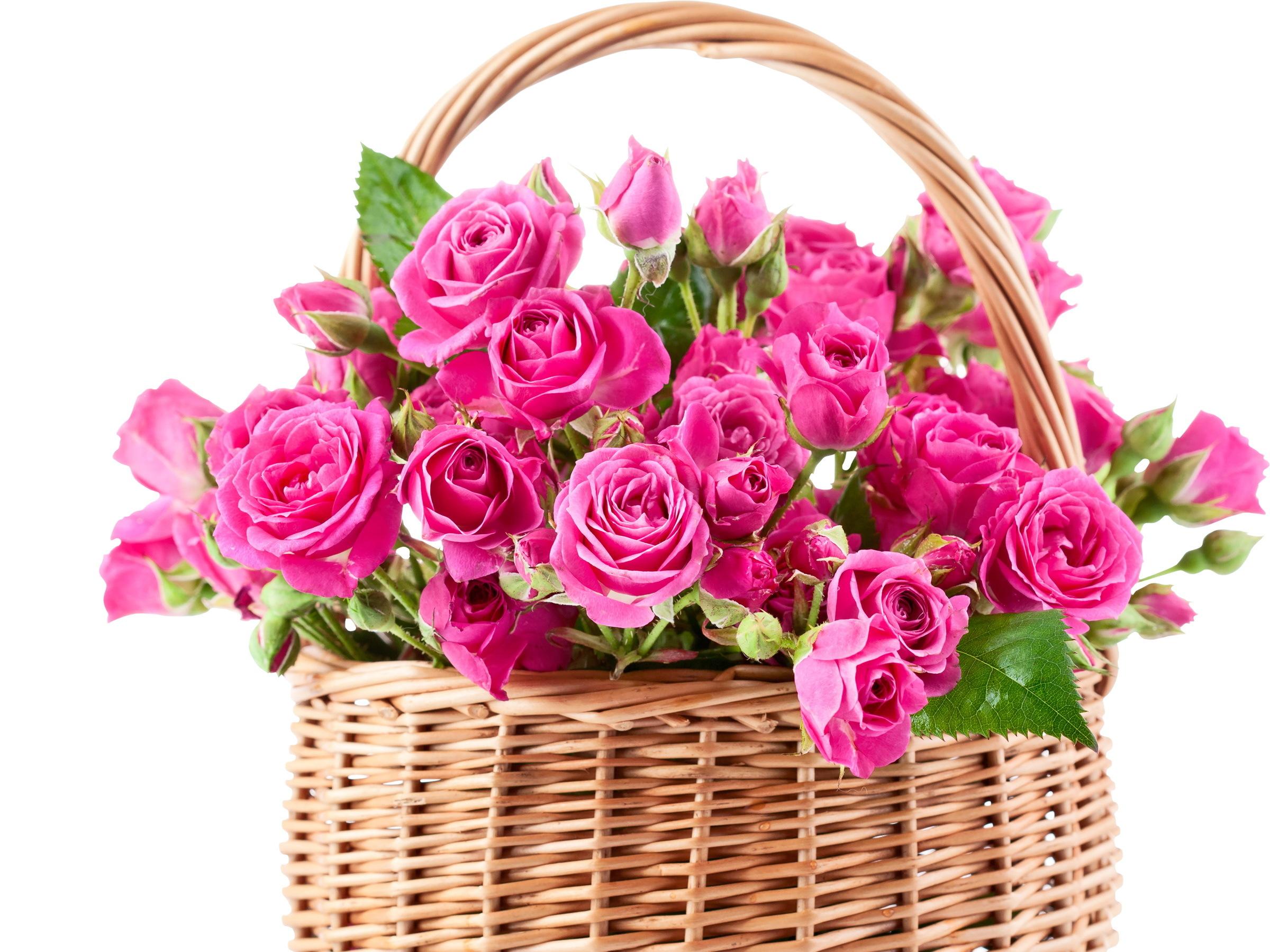 Цветы в корзине картинки красивые, поздравление свадьбой
