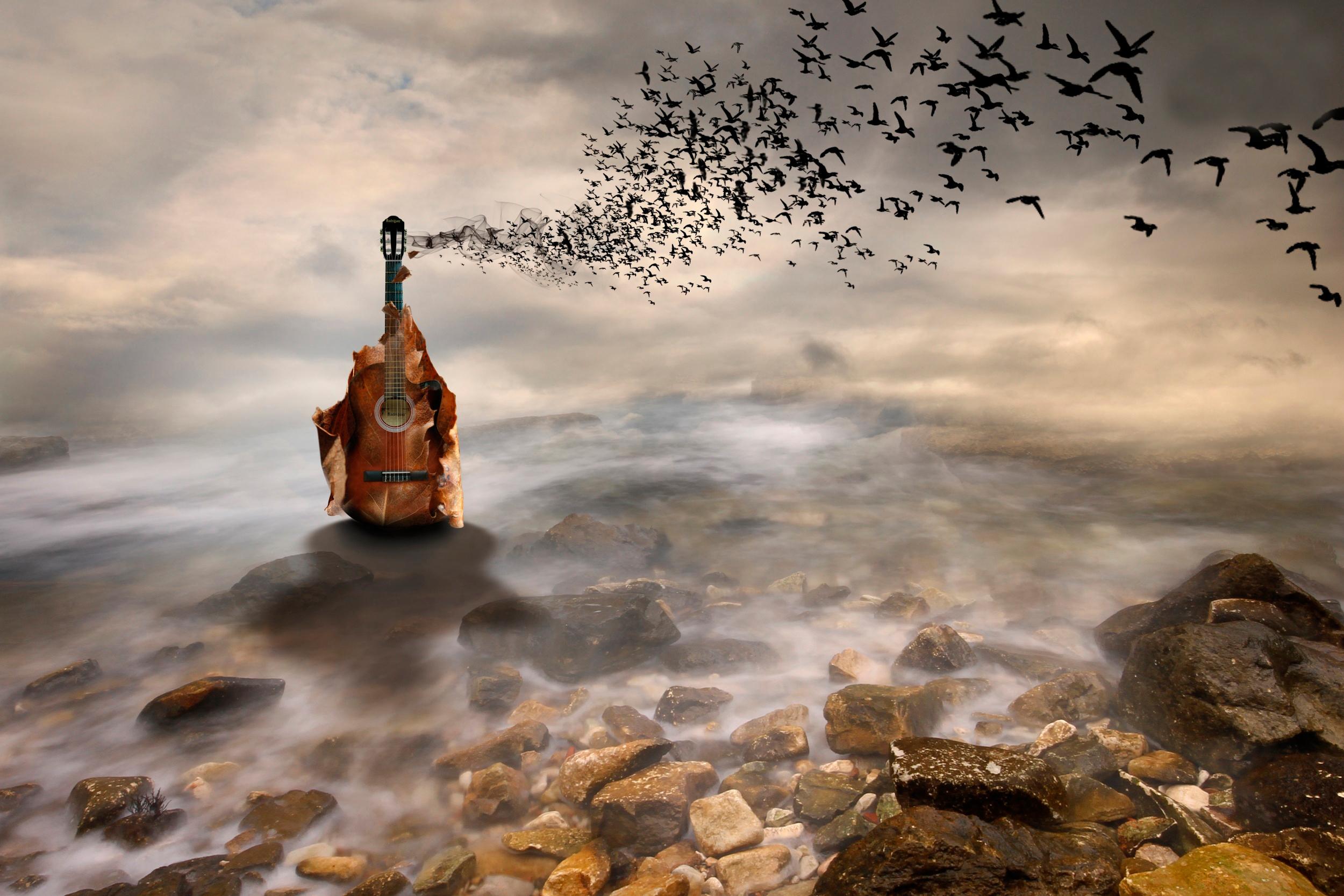 необычные картинки для музыки одной, передней