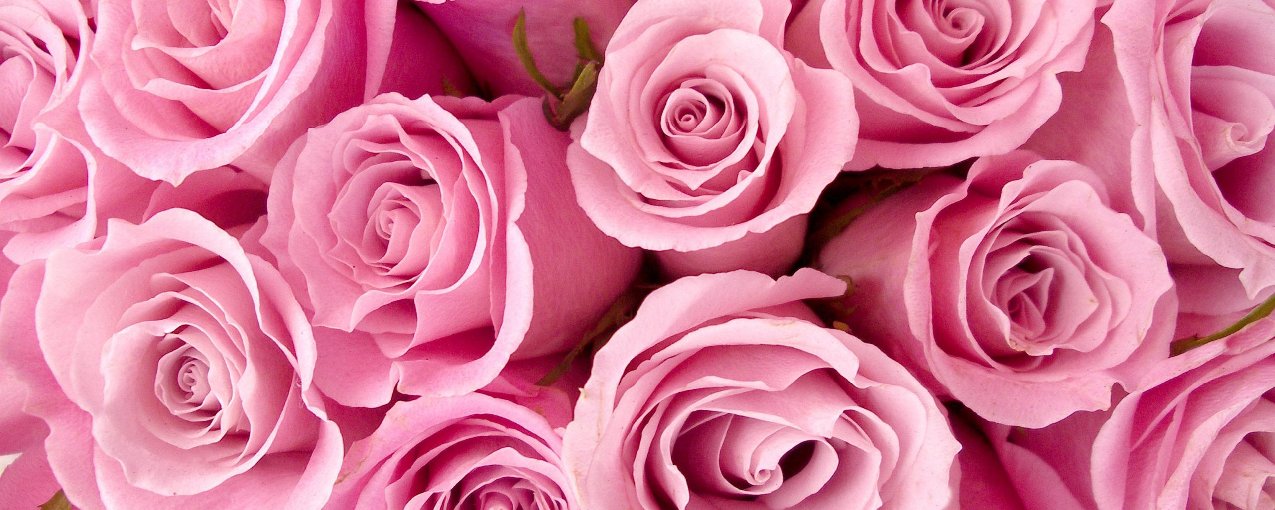 Картинки на обложки розы