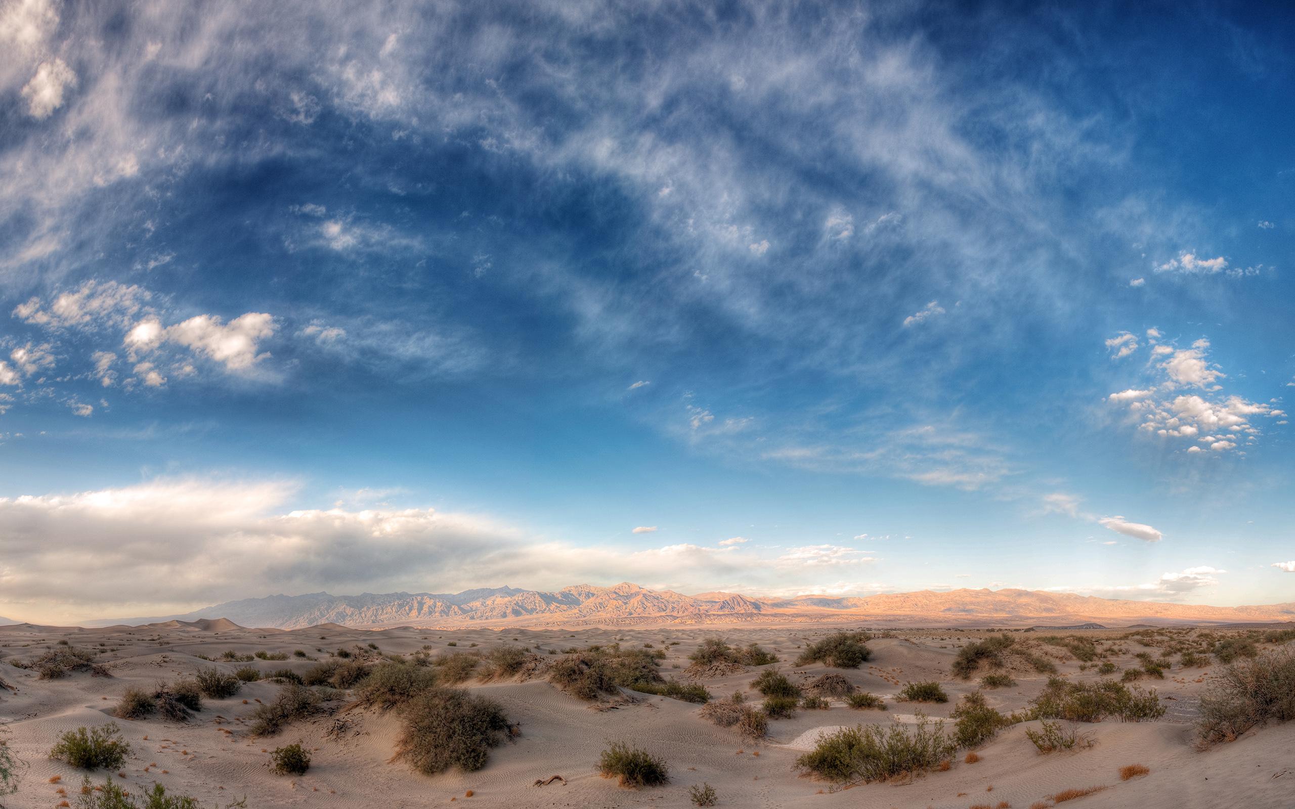 природа животные пустыня  № 3146341 без смс