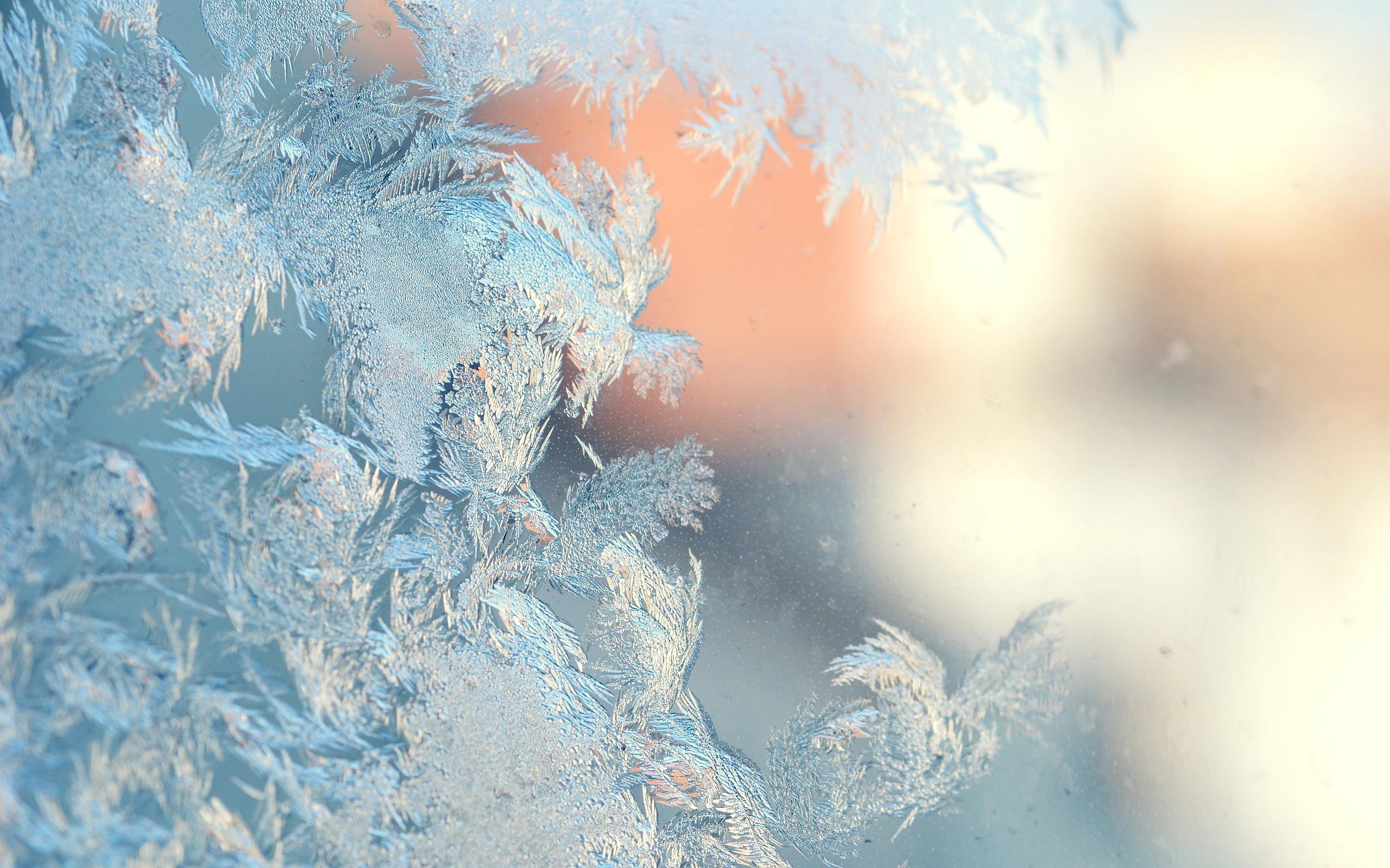 Обои Замерзший Экран