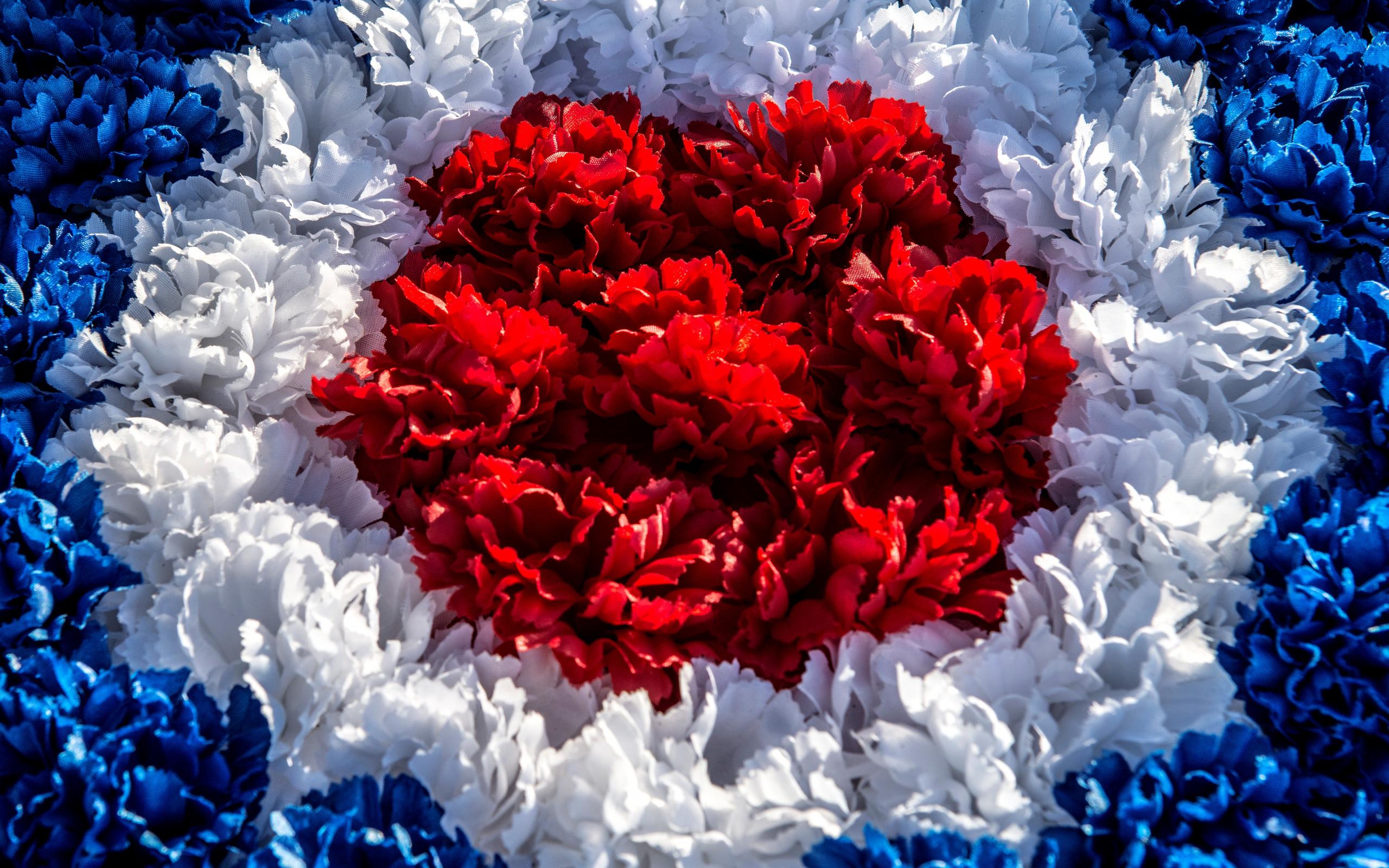 капроновая лента, картинки яркие красные синие натальи