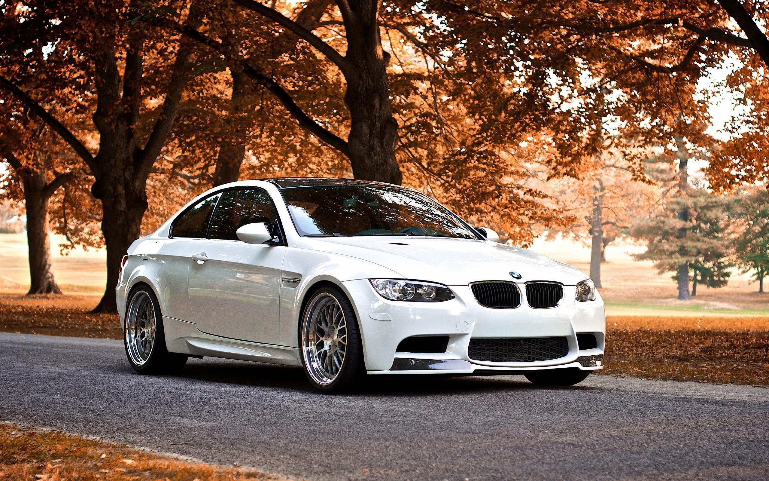 BMW M6 дорога осень  № 2445242 бесплатно