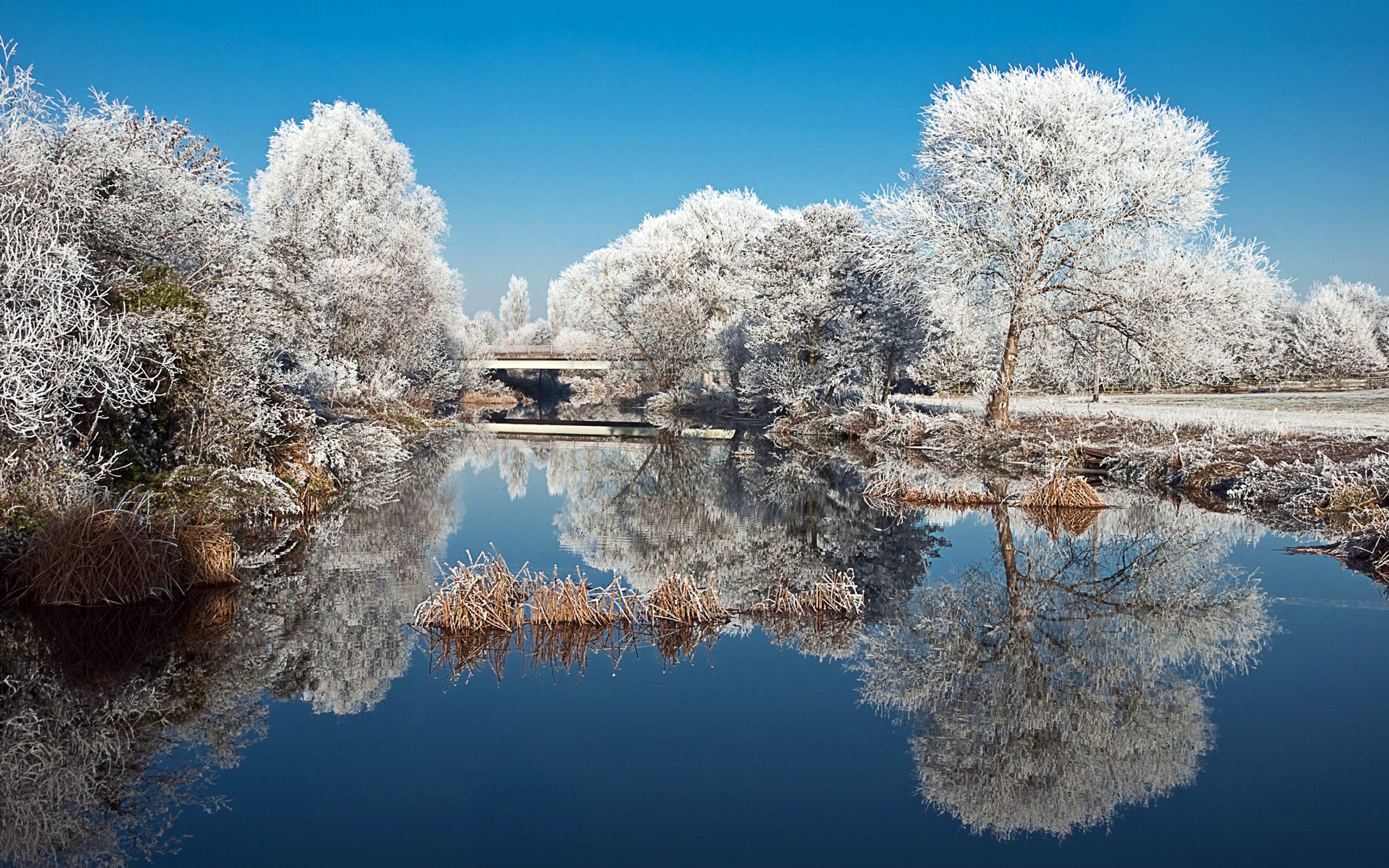 озеро зима иней the lake winter frost  № 580085 загрузить
